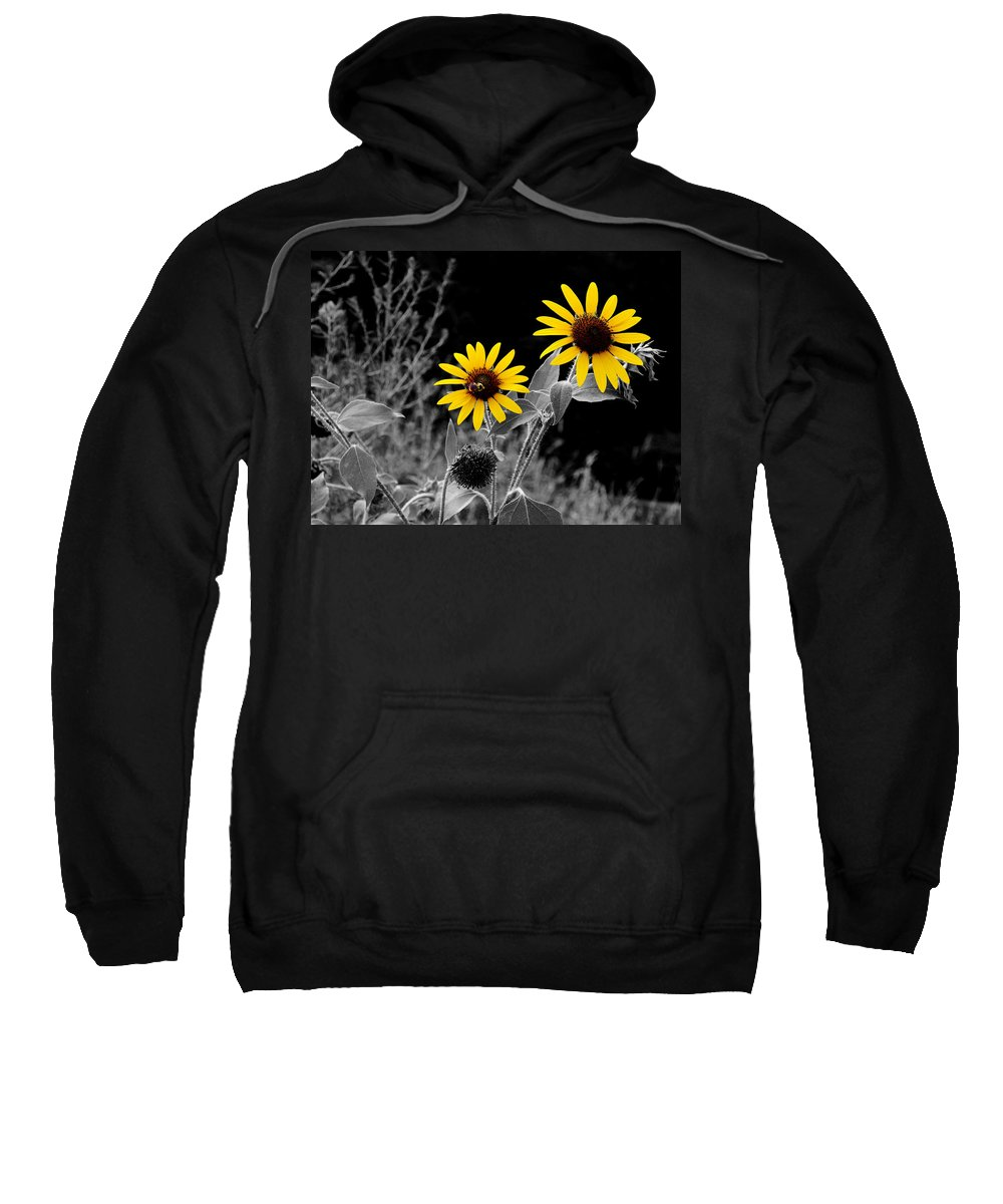 Sunflower Sweatshirt featuring the photograph Being Busy by David Pantuso