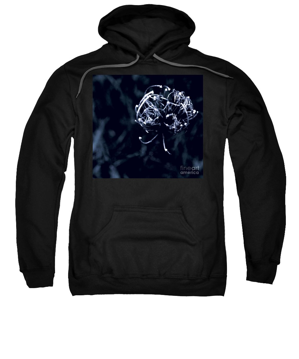 Jamie Lynn Gabrich Sweatshirt featuring the photograph Bewitched by Jamie Lynn