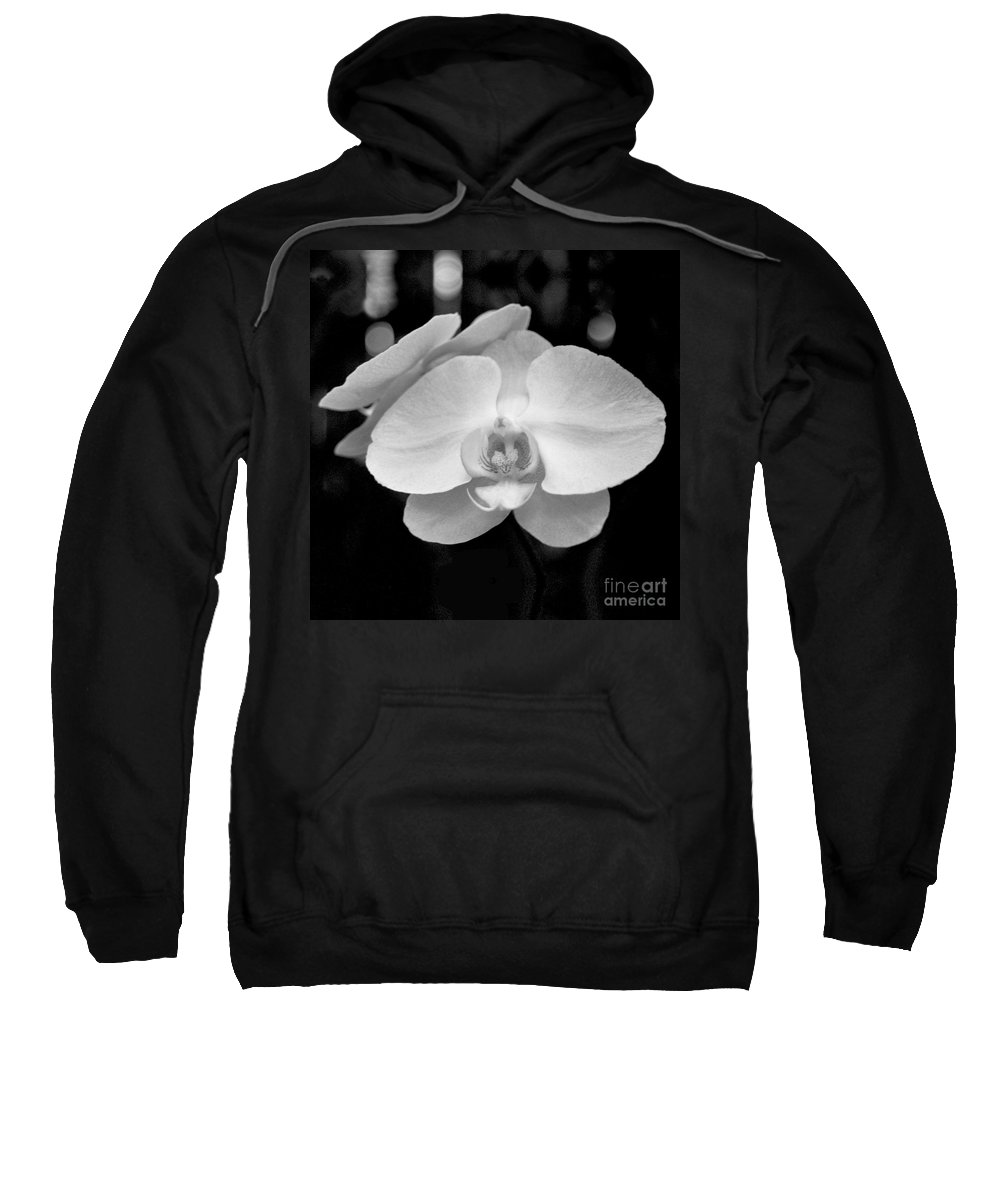 Floral Sweatshirt featuring the photograph Black And White Orchid With Lights - Square by Heather Kirk