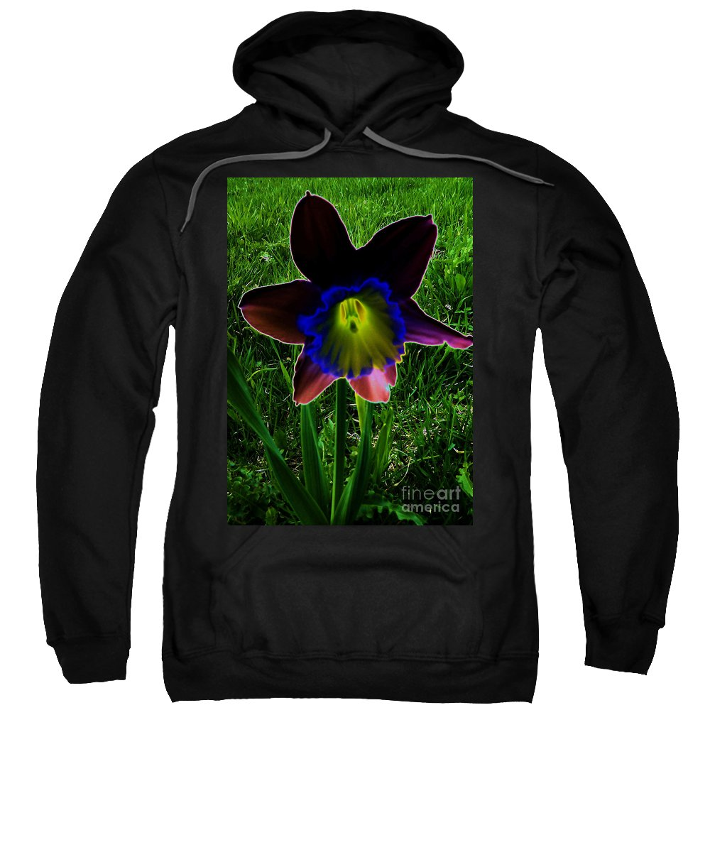 Black Narcissus Sweatshirt featuring the photograph Black Narcissus by Martin Howard