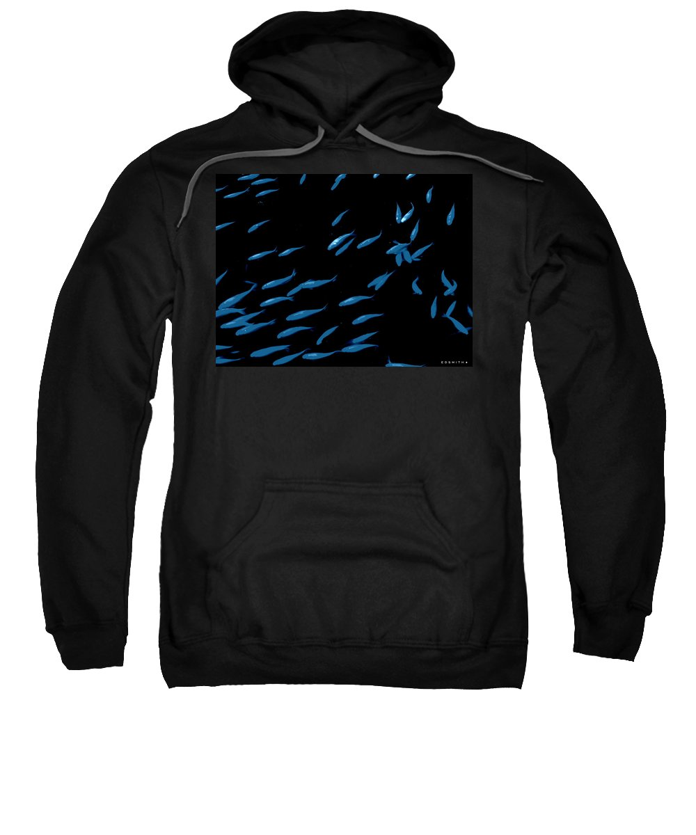 Blue Fins Sweatshirt featuring the photograph Blue Fins by Ed Smith