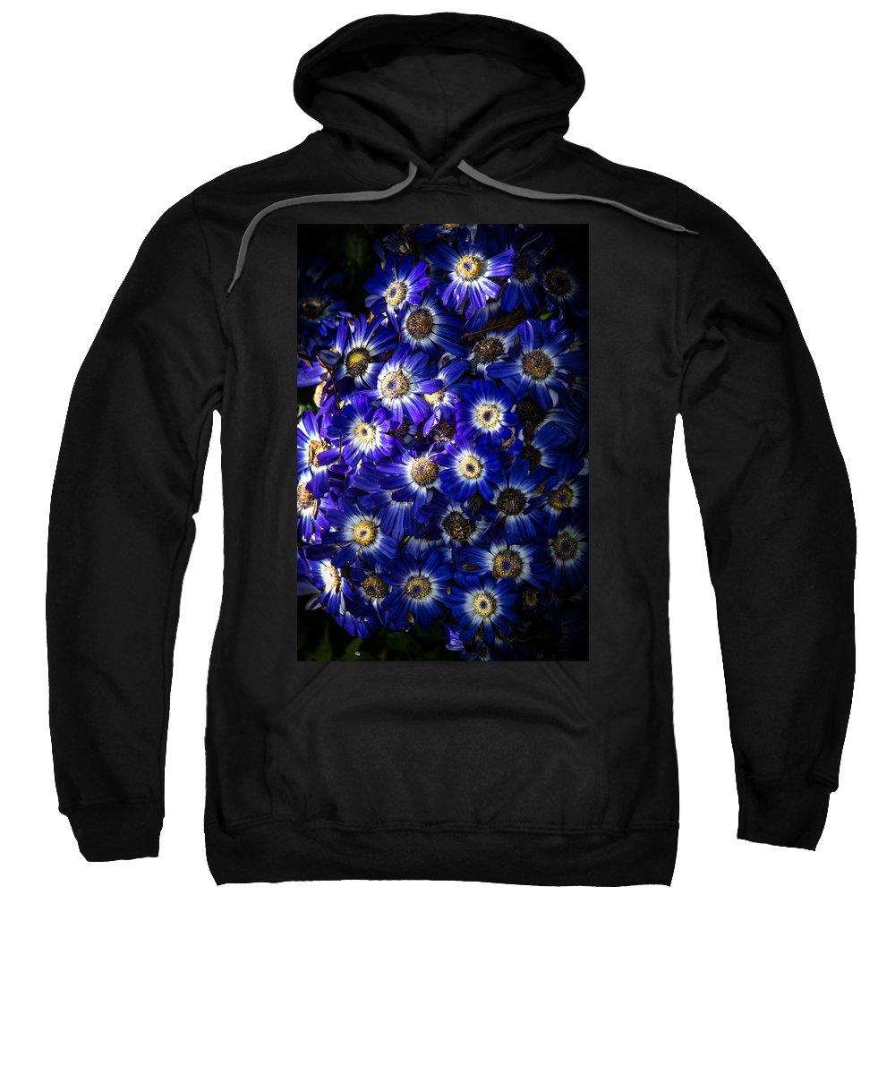 Poem Blue Sweatshirt featuring the photograph Blue Poem by Edgar Laureano