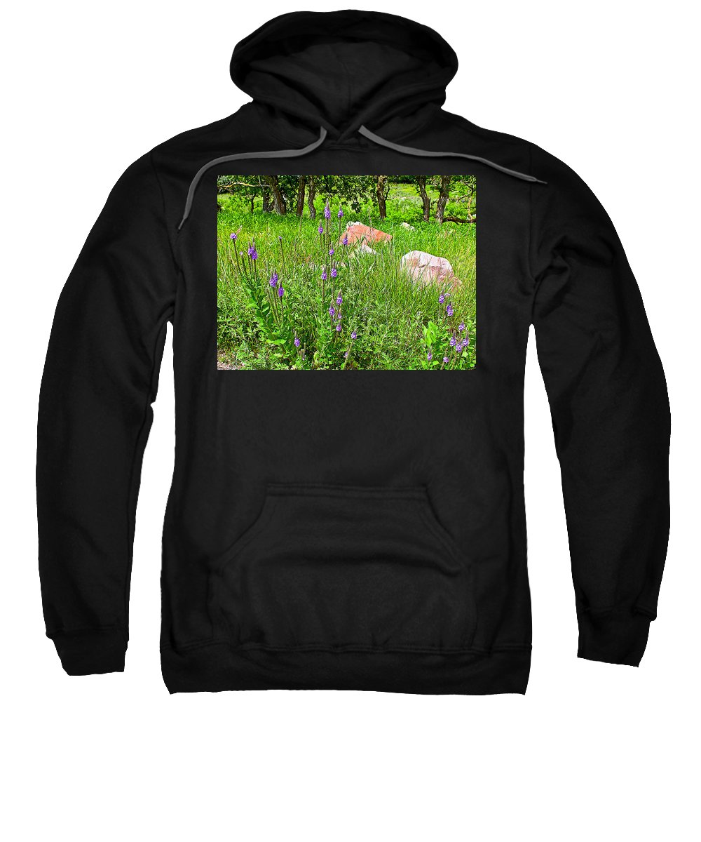 Blue Vervain And Rocks In Pipestone National Monument Sweatshirt featuring the photograph Blue Vervain And Rocks In Pipestone National Monument-minnesota by Ruth Hager