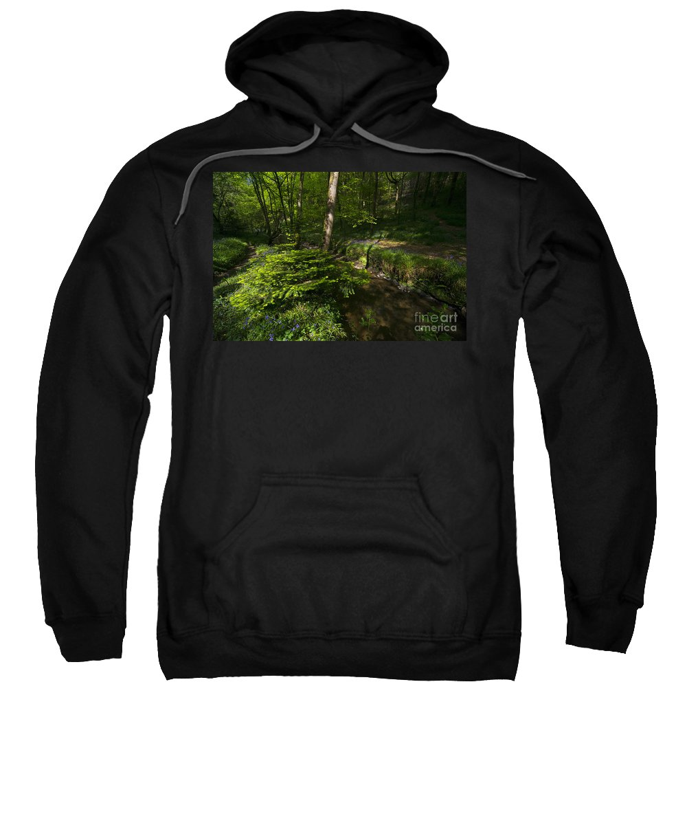 Bluebell Sweatshirt featuring the photograph Bluebell Wood by Rob Hawkins