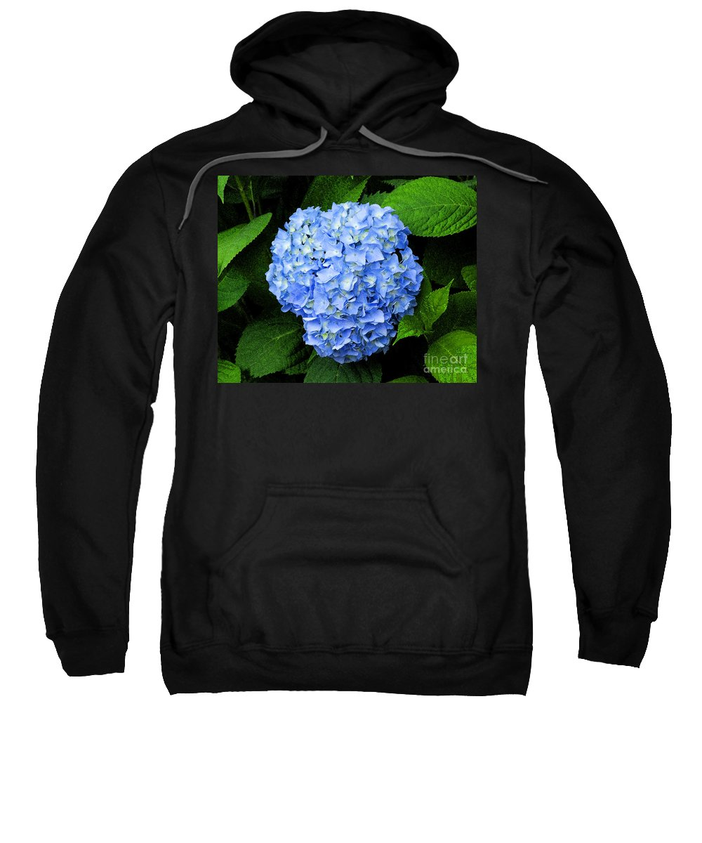 Flower Sweatshirt featuring the photograph Blues Hues by Joe Geraci