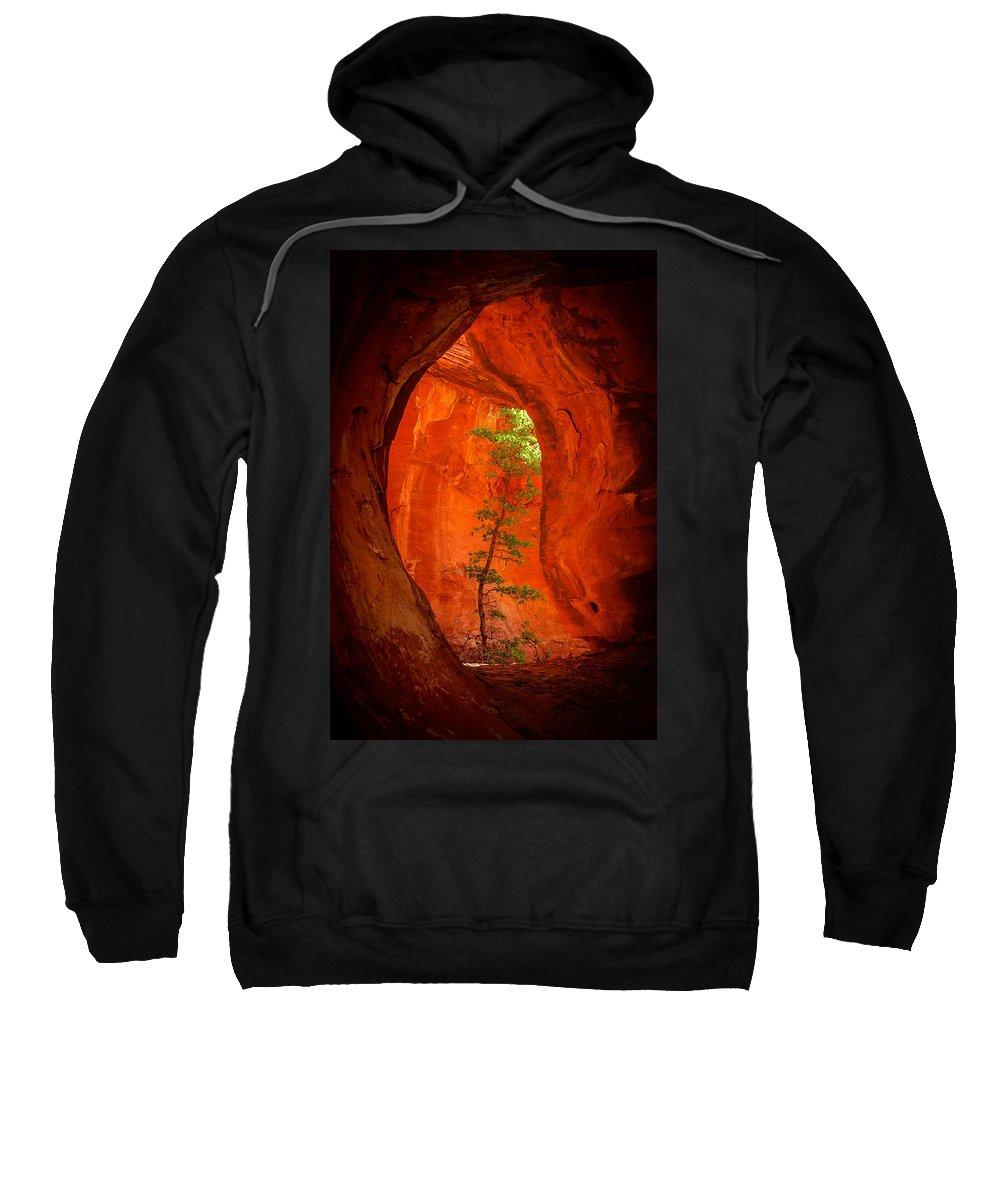 Sedona Sweatshirt featuring the photograph Boynton Canyon 04-343 by Scott McAllister