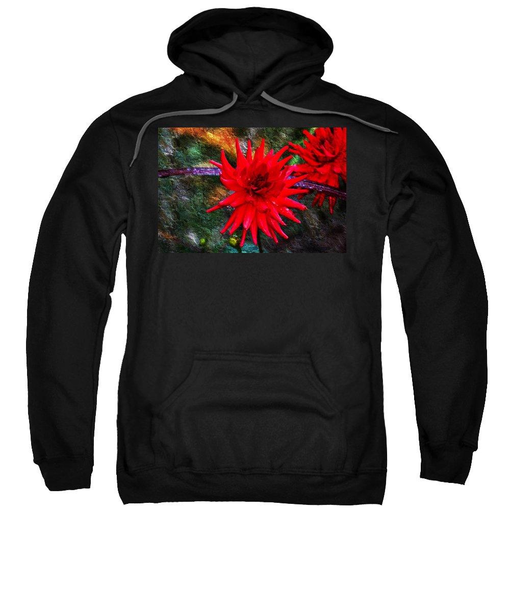 Autumn Sweatshirt featuring the photograph Brilliance In An Autumn Garden - Red Dahlia by Marie Jamieson