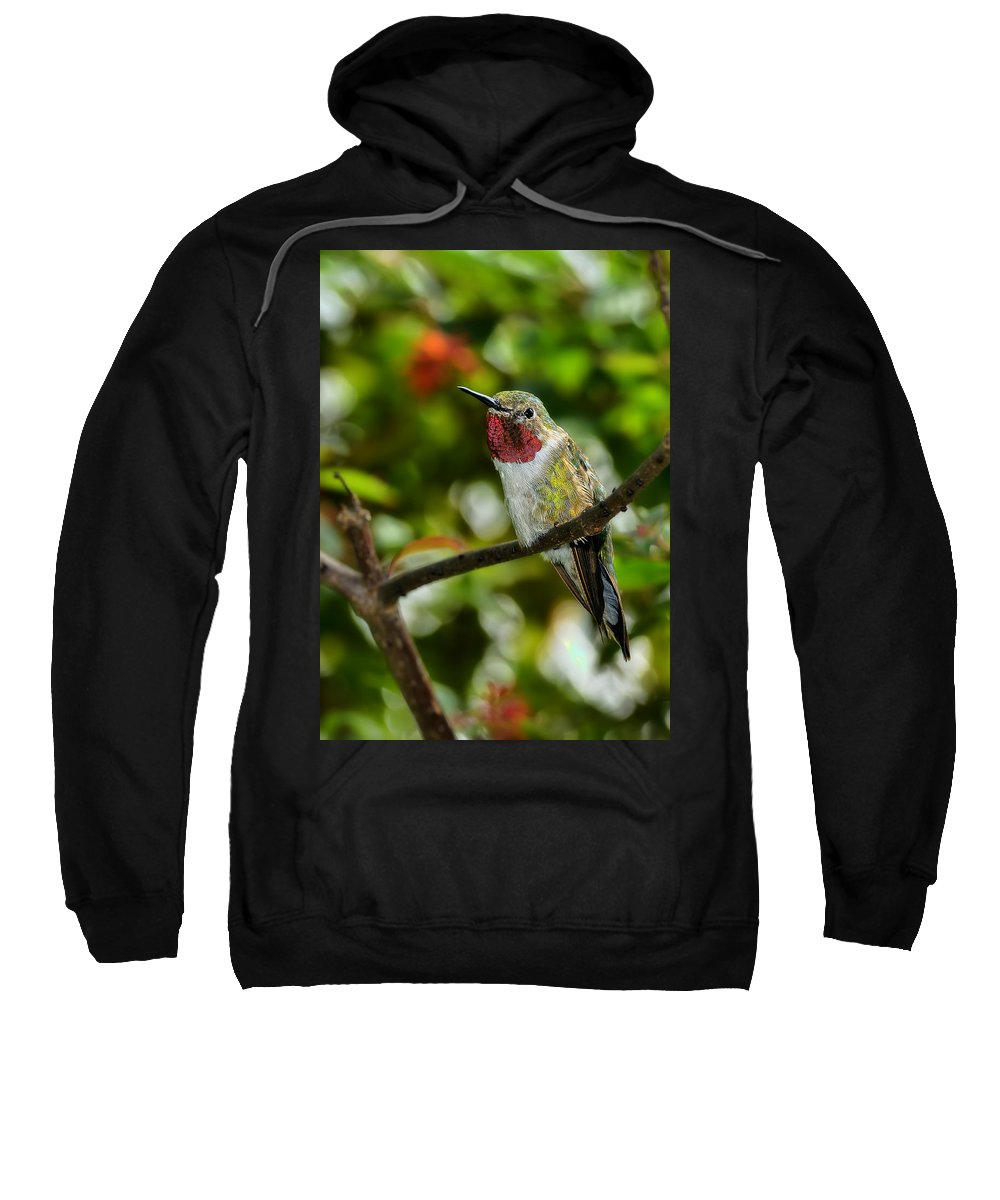 Dodsworth Sweatshirt featuring the photograph Brilliant Color Of The Ruby-throated Hummingbird by Bill Dodsworth