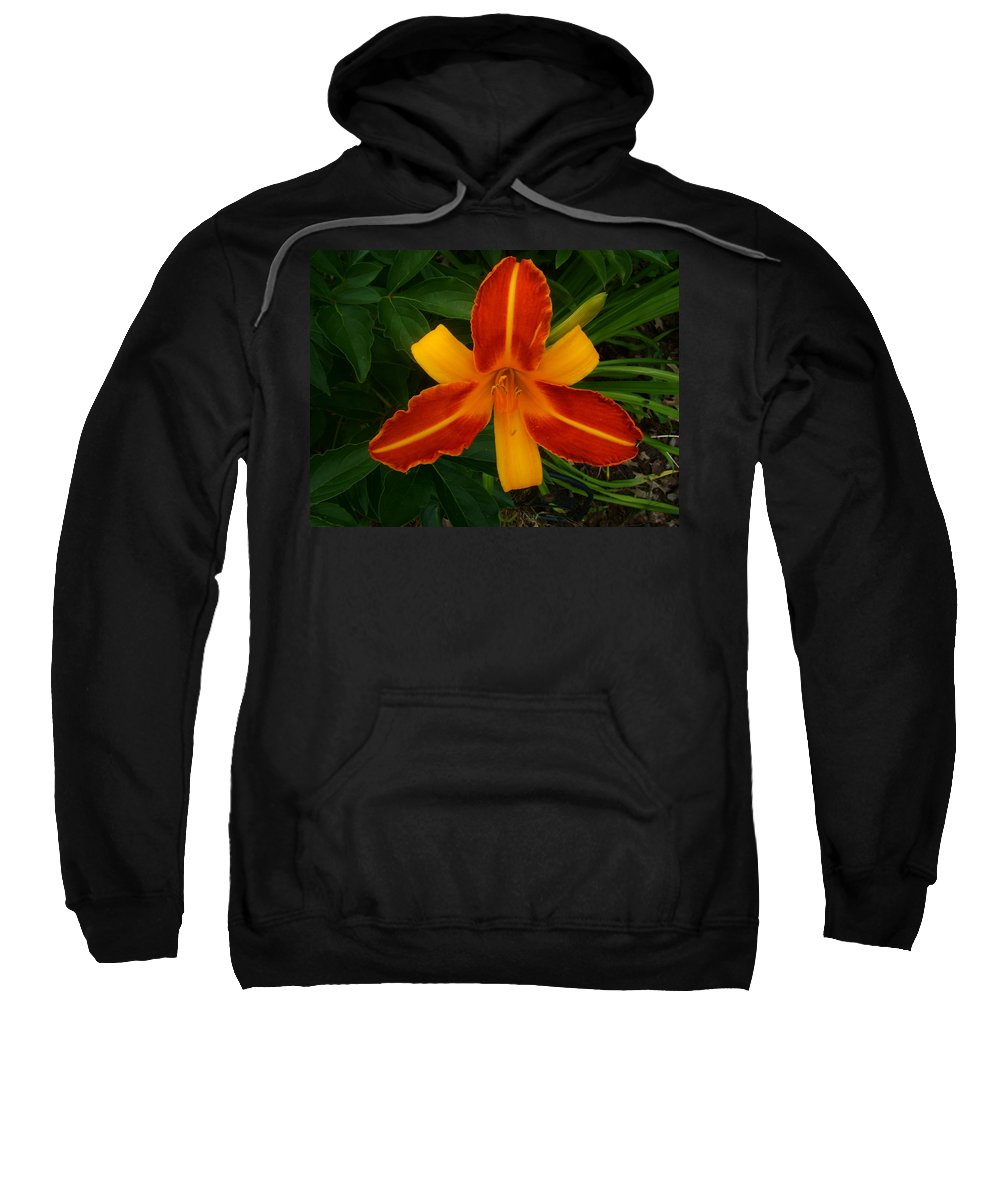 Lily Sweatshirt featuring the photograph Brilliant Orange Lily by Elaine Duras