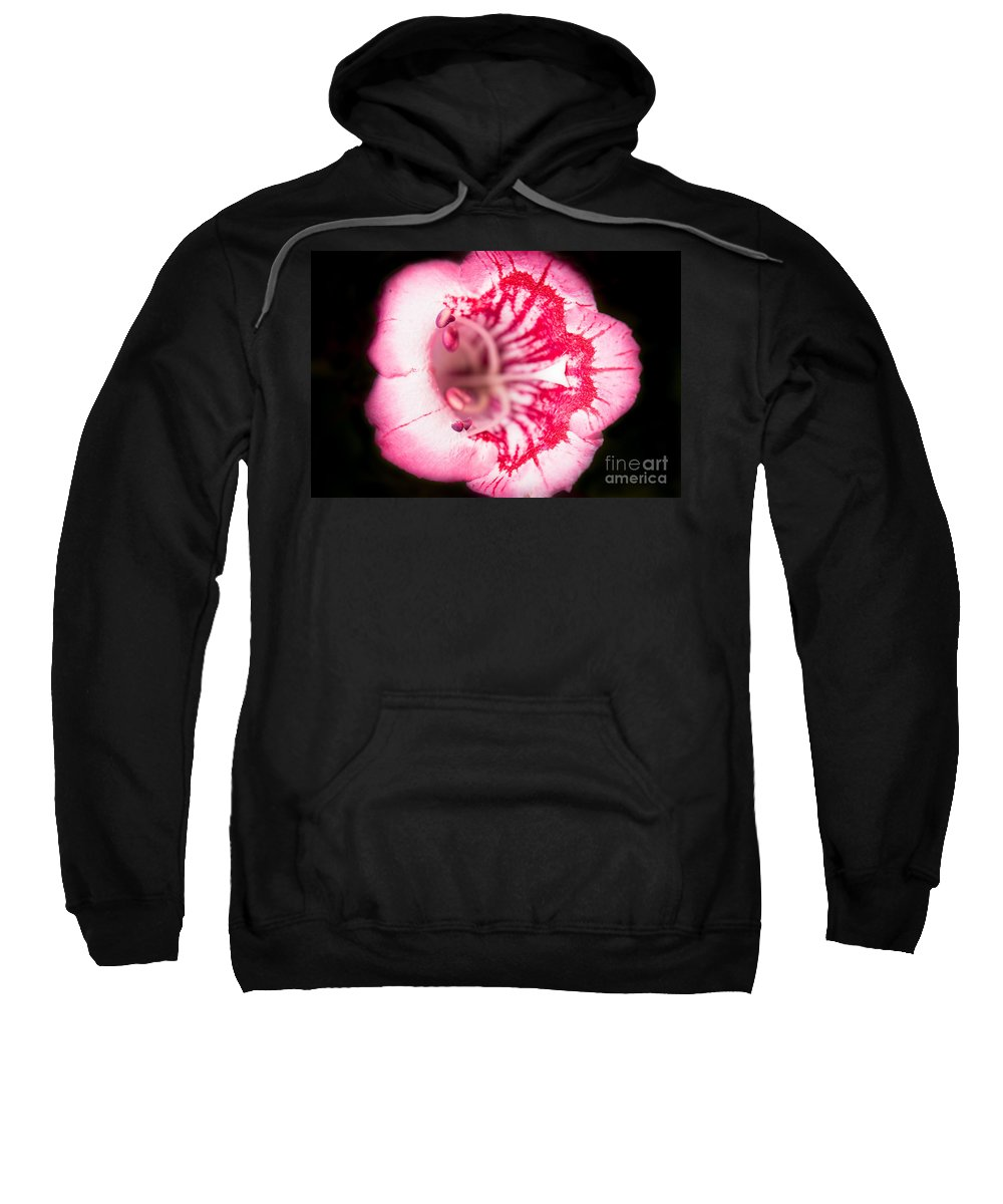 Botanical Sweatshirt featuring the photograph Budding Flower by John Wadleigh