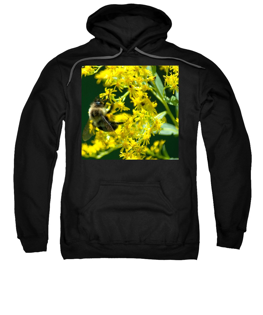 Optical Playground By Mp Ray Sweatshirt featuring the photograph Bumble Bee by Optical Playground By MP Ray