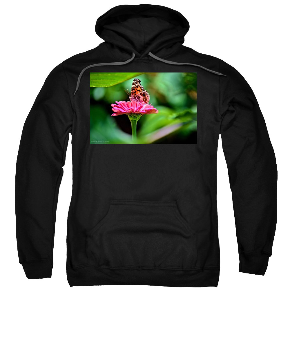 Butterfly Sweatshirt featuring the photograph Butterfly And Flower by Tara Potts