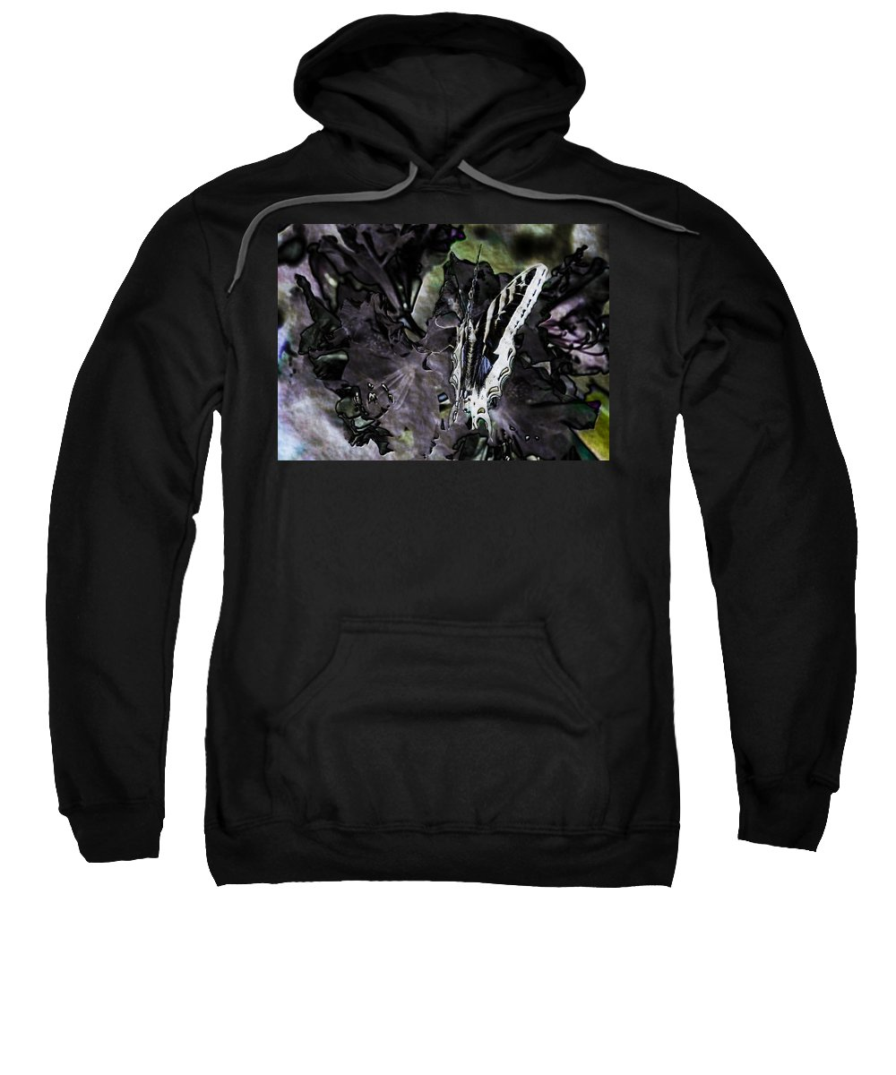 Butterfly Sweatshirt featuring the photograph Butterfly In Violet Green And Black by Belinda Greb
