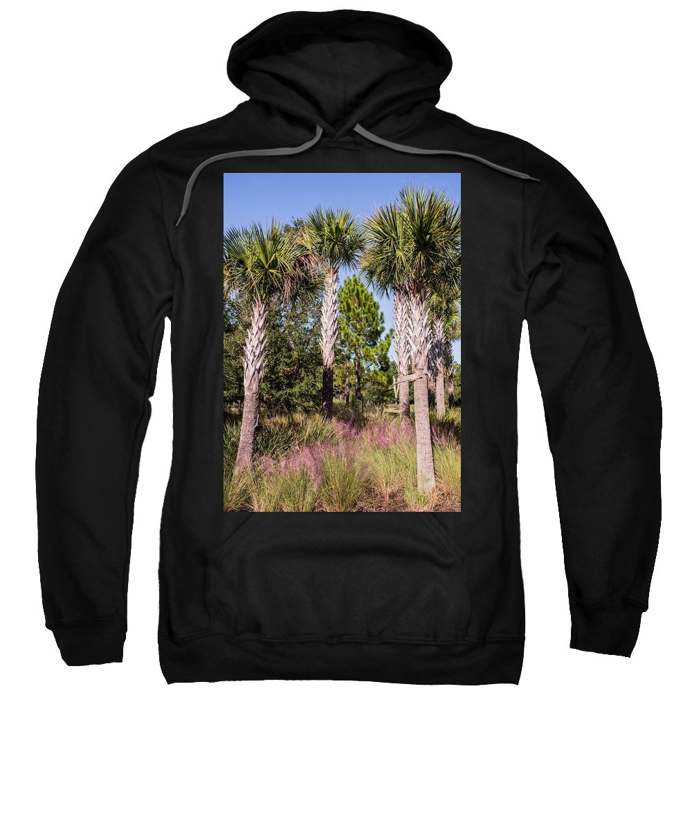 Palms Sweatshirt featuring the photograph Cabbage Palm by Zina Stromberg