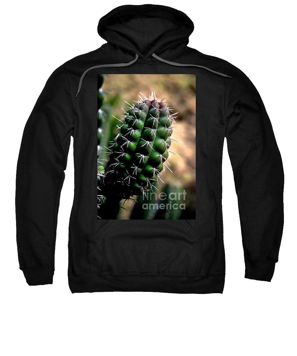 Sahuaro Sweatshirt featuring the photograph Cactus Arm by Kathy McClure