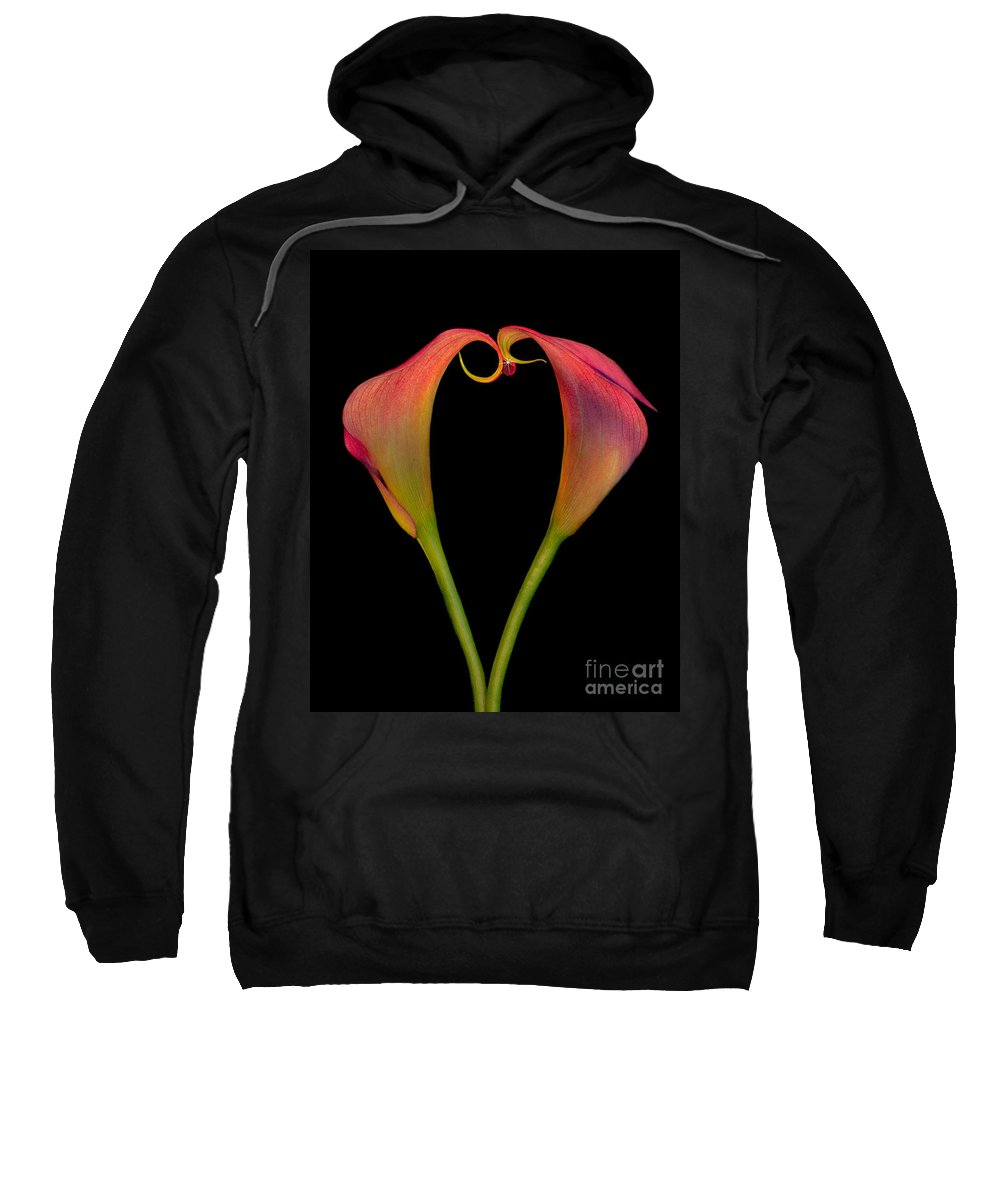 Calla Lilies Sweatshirt featuring the photograph Calla Lillies Kissing by Susan Candelario