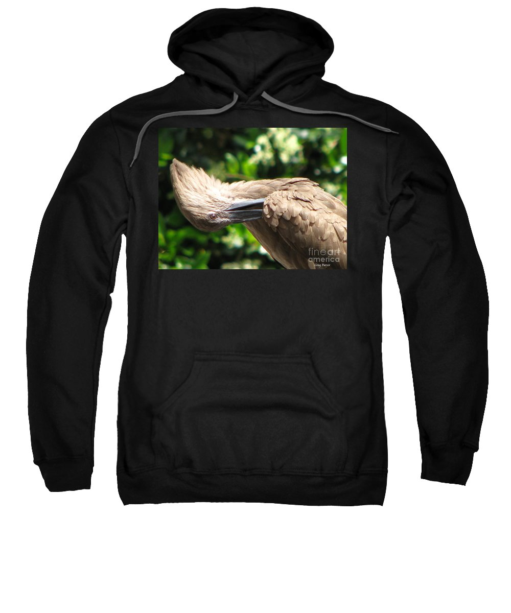 Patzer Sweatshirt featuring the photograph Can You Do This by Greg Patzer