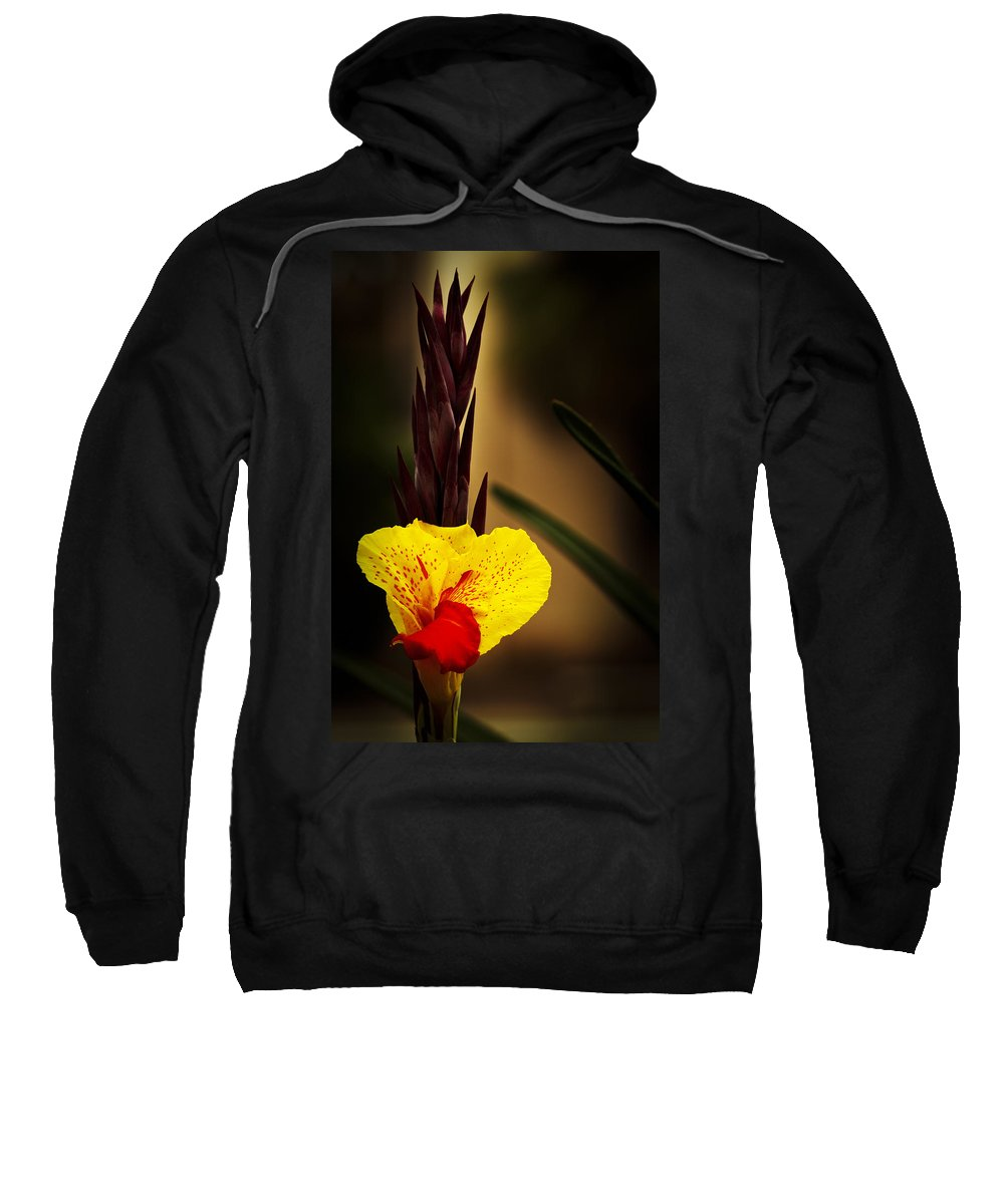 Floral Sweatshirt featuring the photograph Canna Lily 2 by Guy Shultz
