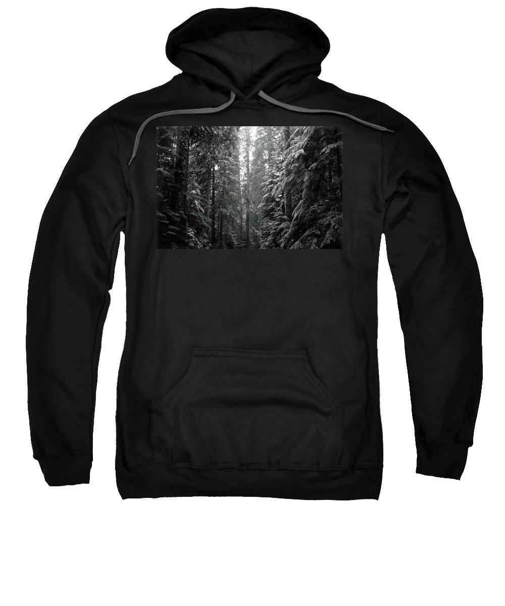 Snow Landscape Sweatshirt featuring the photograph Cascade Snow by Loren McNamara