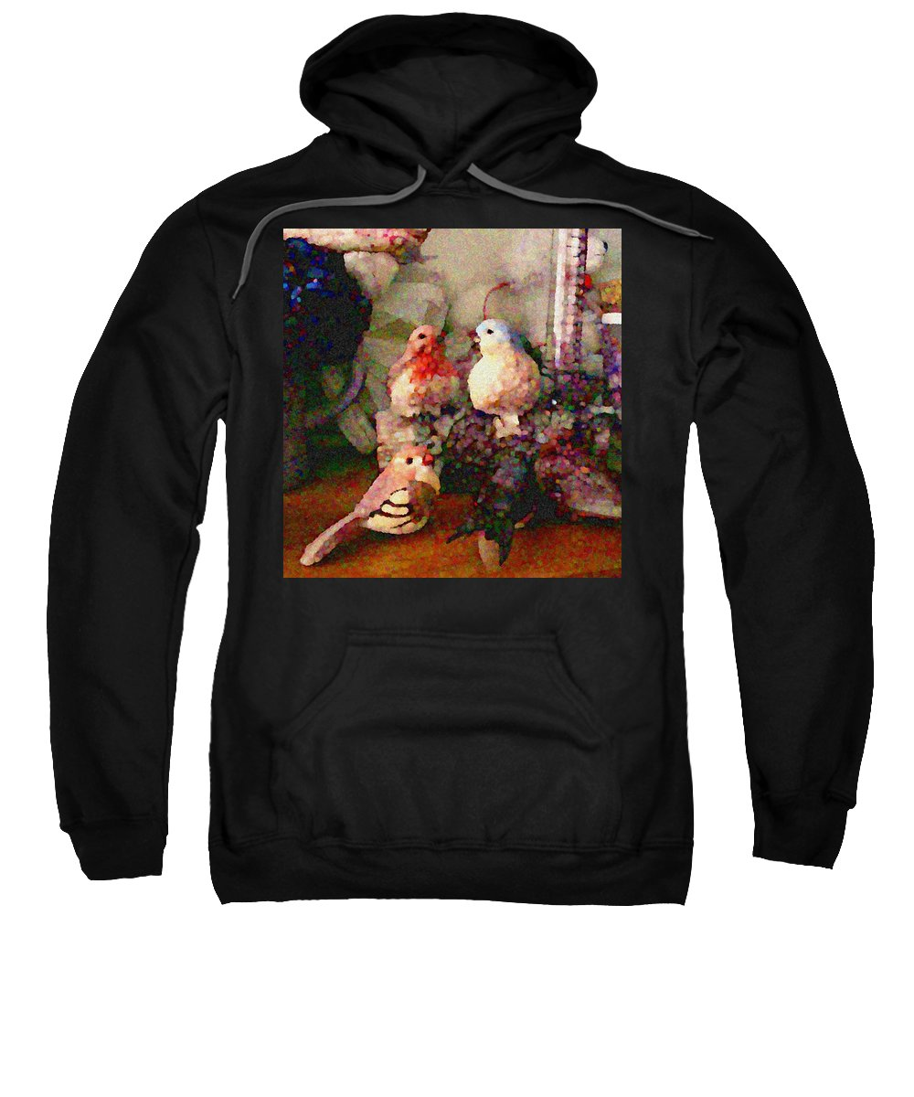 Birds Sweatshirt featuring the photograph CC1 by Costanza Canali