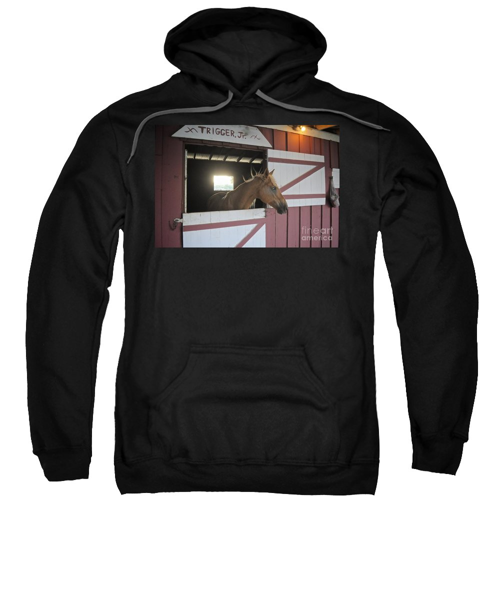 Trigger Sweatshirt featuring the photograph Choicey by Bridgette Gomes