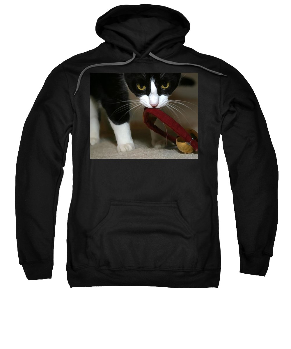 Black And White Sweatshirt featuring the photograph Christmas Kitty by Jeanne A Martin