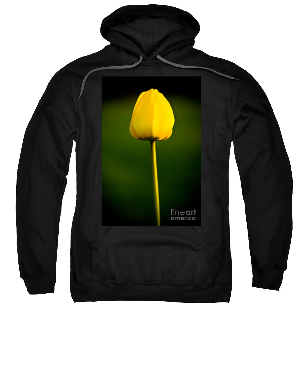 Floral Sweatshirt featuring the photograph Closed Yellow Flower by John Wadleigh