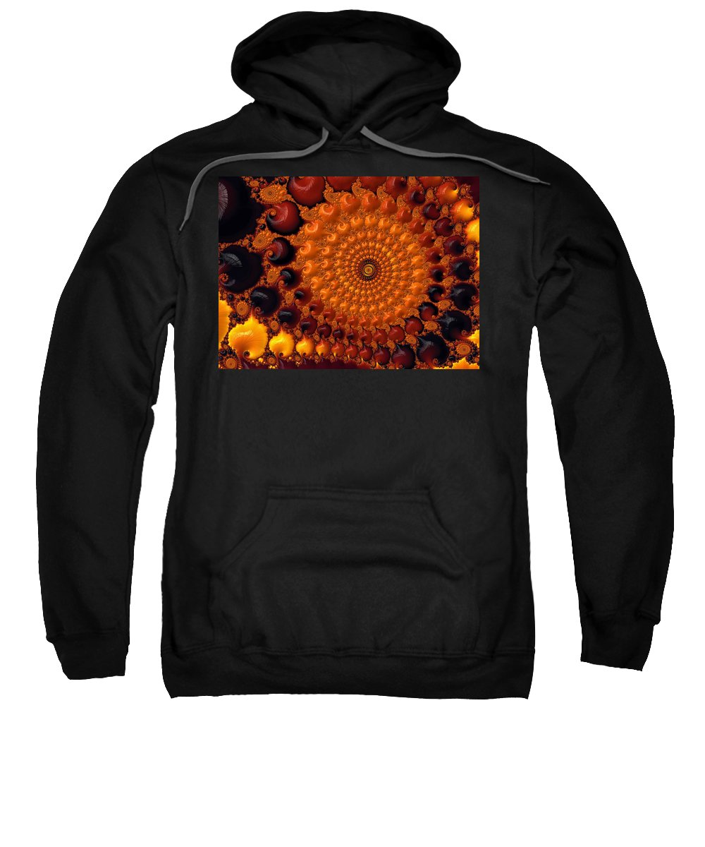 Fractal Sweatshirt featuring the digital art Collection Time by Gary Blackman
