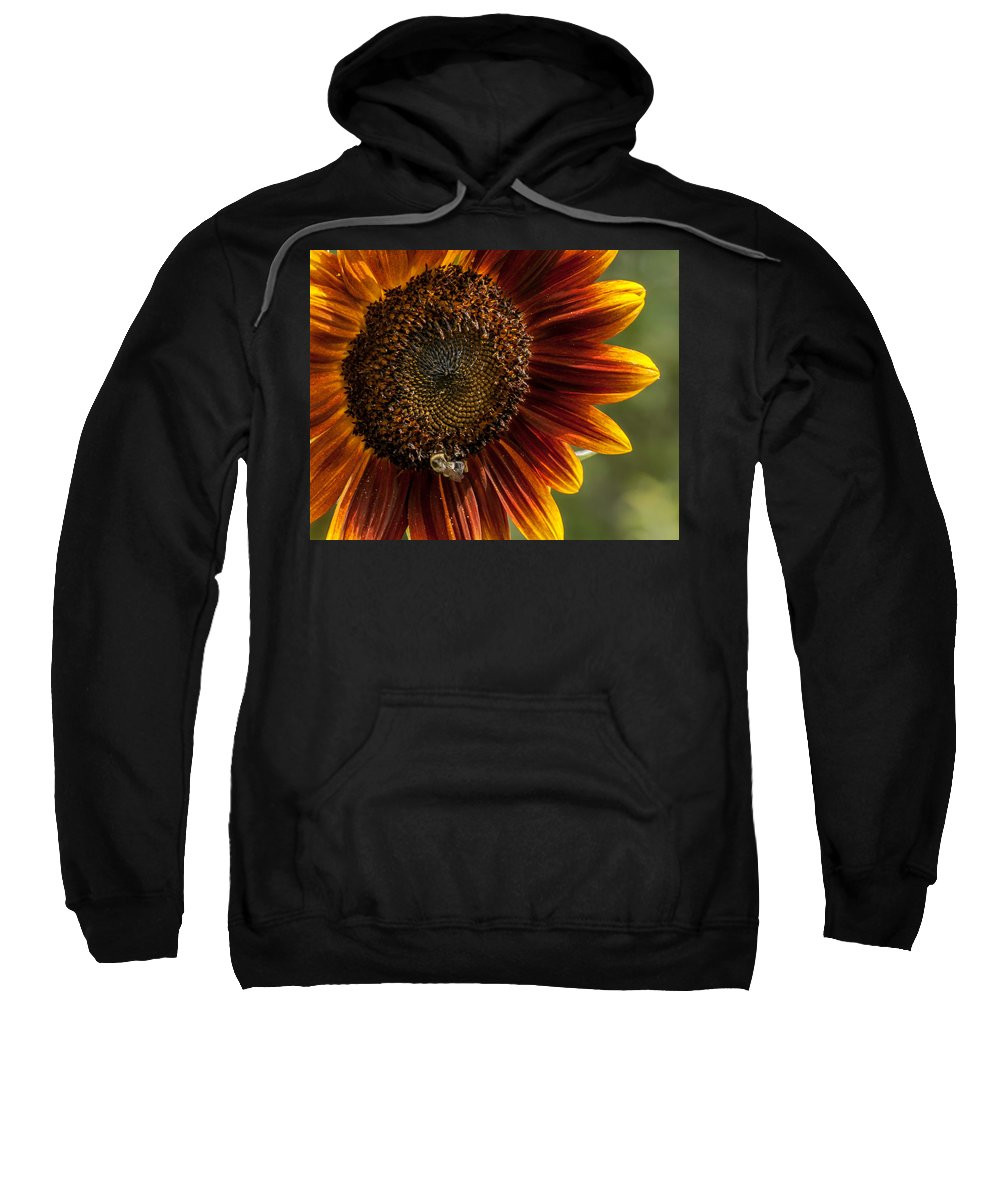 Agriculture Sweatshirt featuring the photograph Colorful Summer by Sharon Meyer