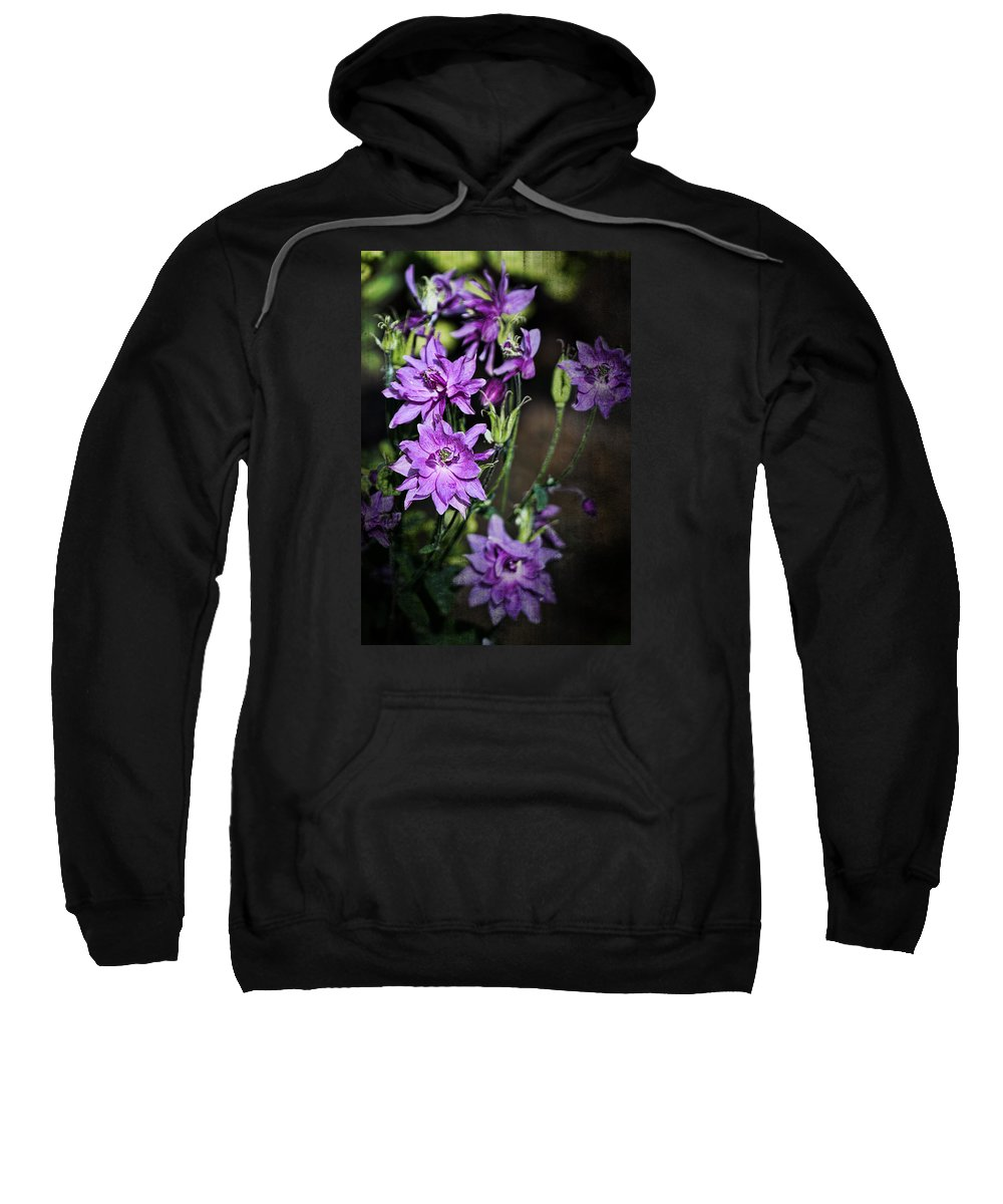 Flower Sweatshirt featuring the photograph Columbine by Marcia Colelli