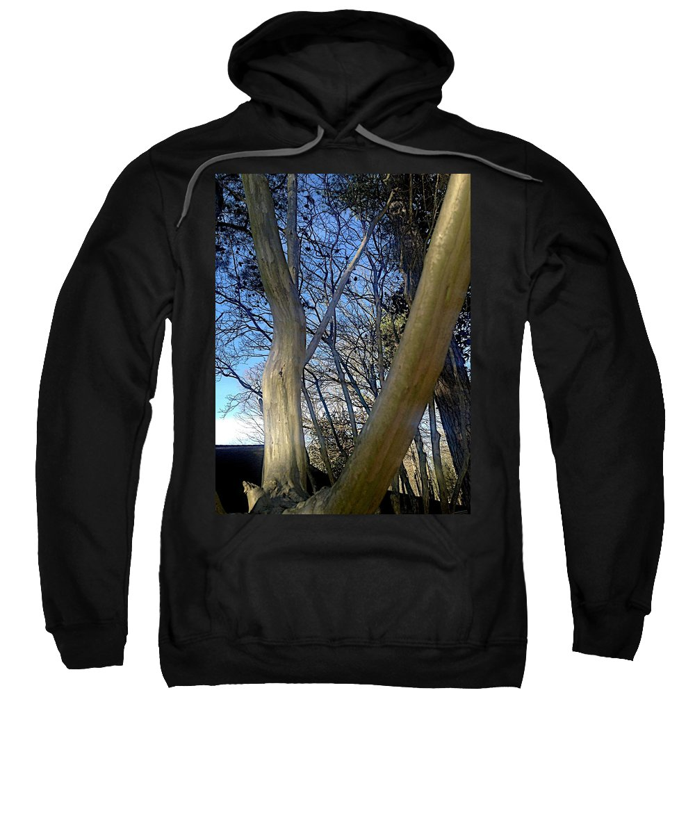 Crepe Myrtle Sweatshirt featuring the photograph Crape Myrtle by Joseph Yarbrough