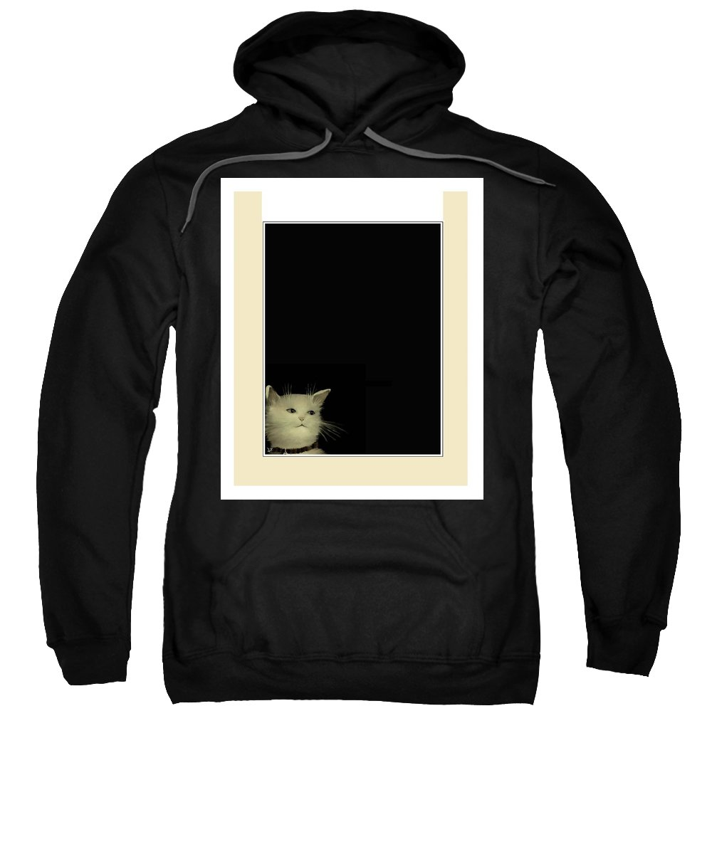Diane Strain Sweatshirt featuring the painting Curious Cat by Diane Strain