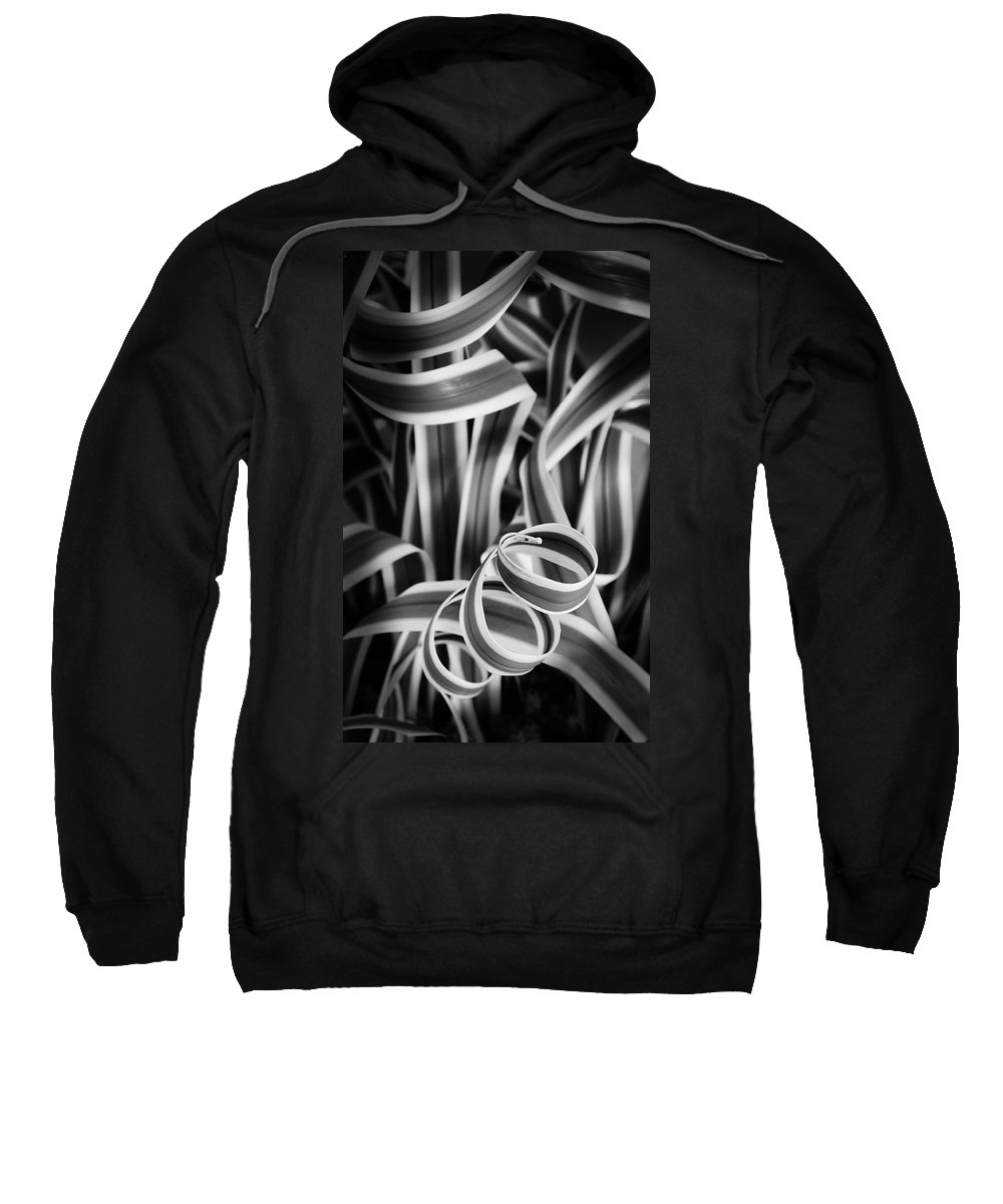 Abstract Sweatshirt featuring the photograph Curley Q by Georgette Grossman