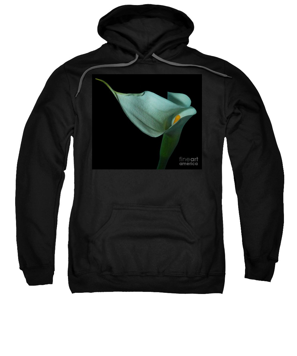 Lily Sweatshirt featuring the photograph Curvacious by Heather Kirk