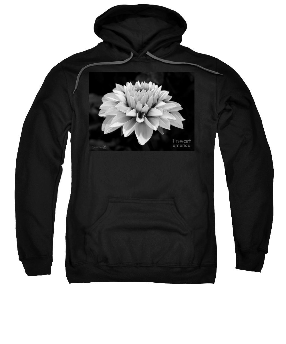 Dahlia Sweatshirt featuring the photograph Dahlia Named Brian Ray by J McCombie