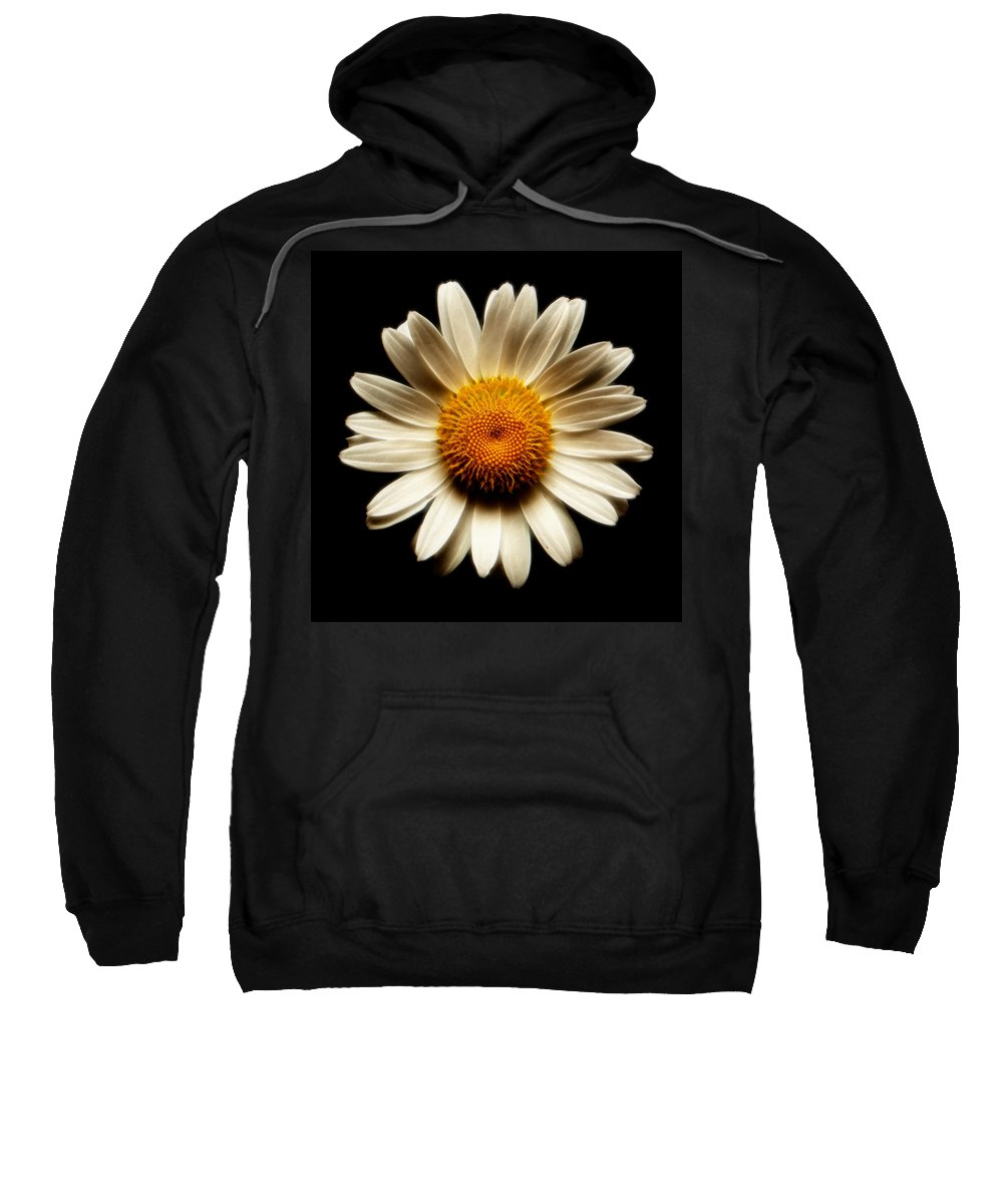 Daisies Are Not Flowers Sweatshirt featuring the photograph Daisy On Black Square Fractal by Weston Westmoreland