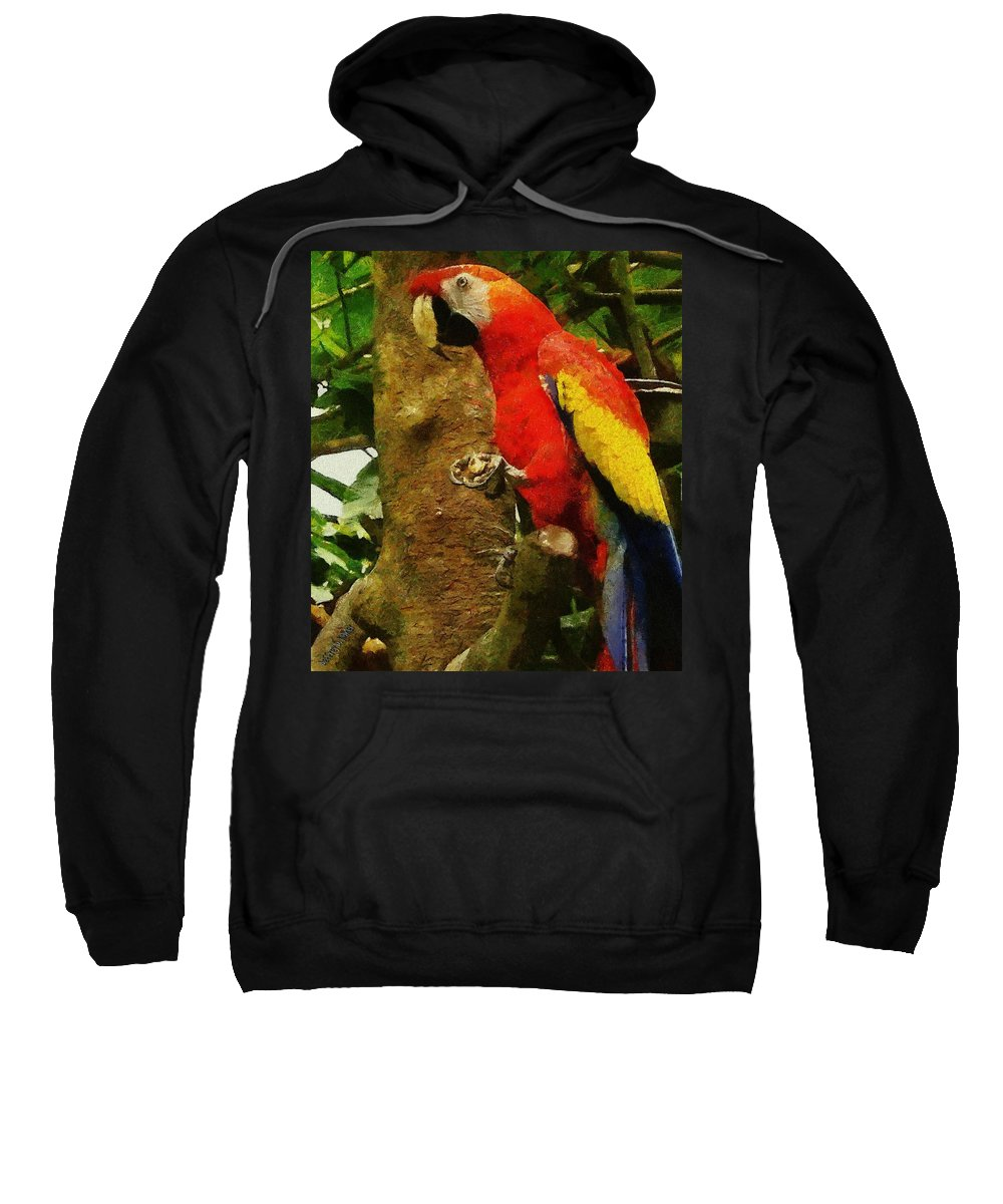 America Sweatshirt featuring the painting Danse Macaw by Jeffrey Kolker