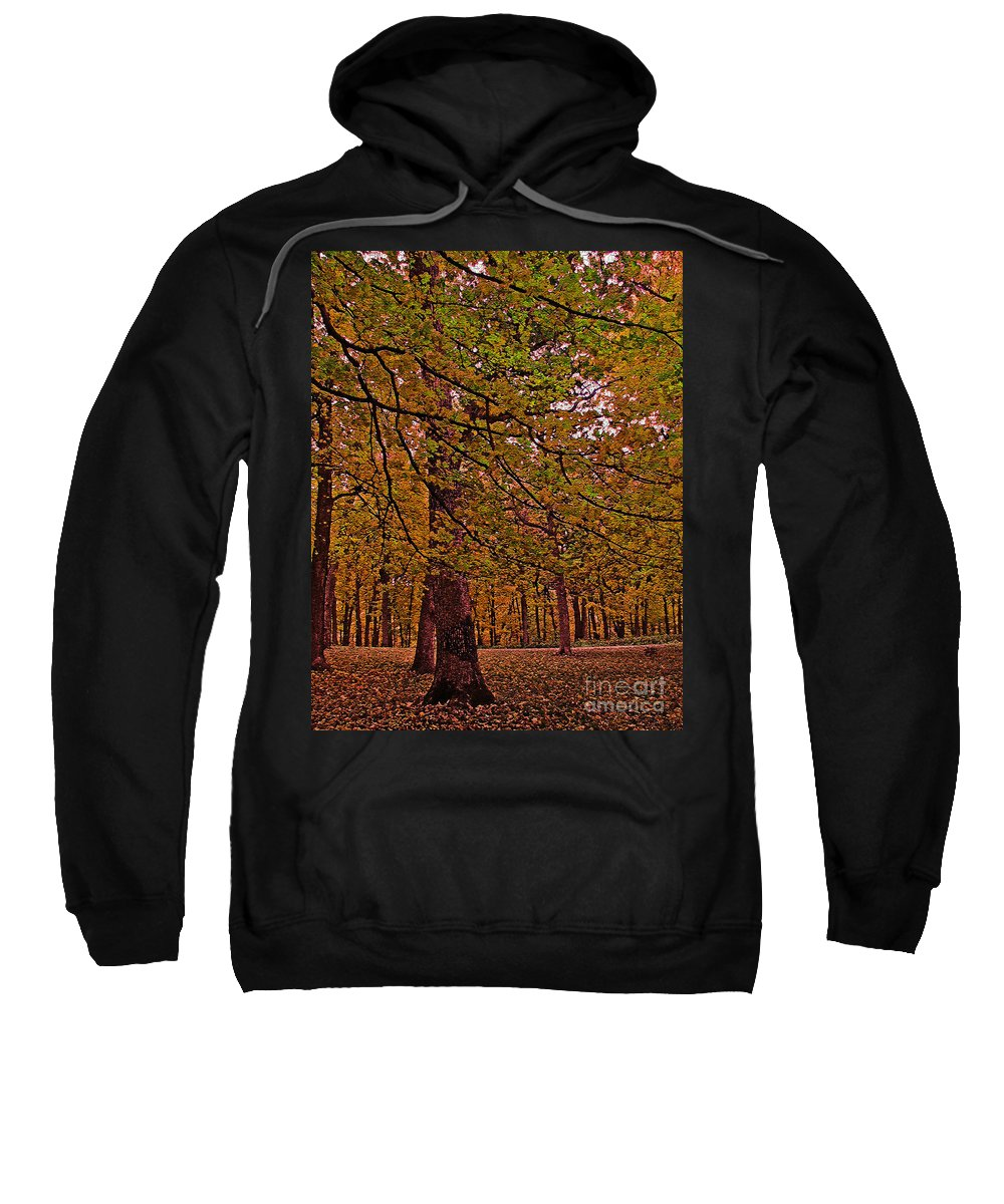Sweatshirt featuring the photograph Darker Textured Autumn Trees by Minding My Visions by Adri and Ray