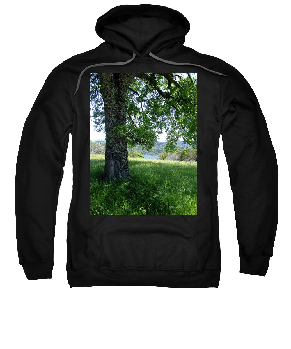 Nature Sweatshirt featuring the photograph Days Of Summer by Donna Blackhall