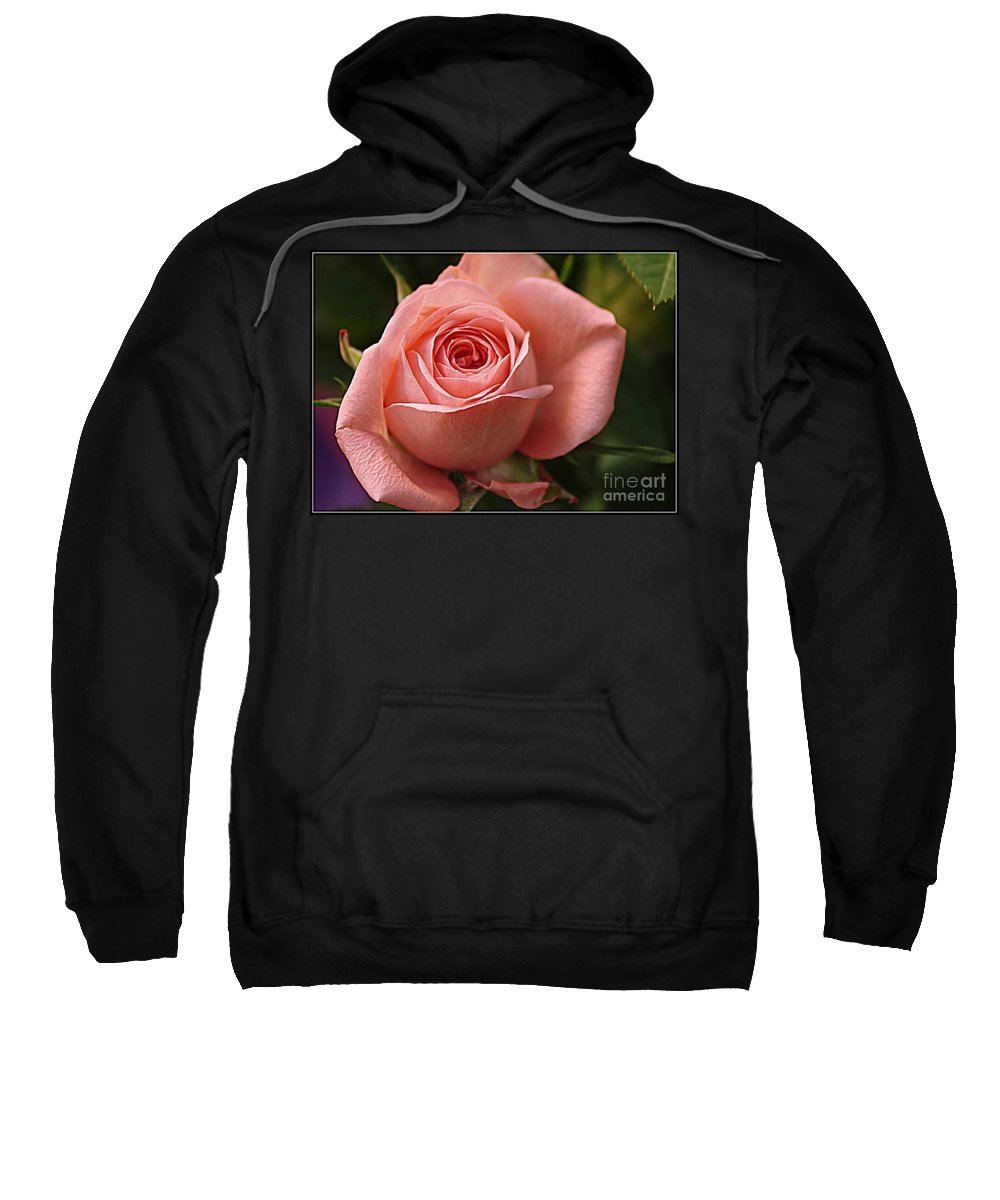 Rose Sweatshirt featuring the photograph Delicate Pink Rose by Dora Sofia Caputo Photographic Design and Fine Art