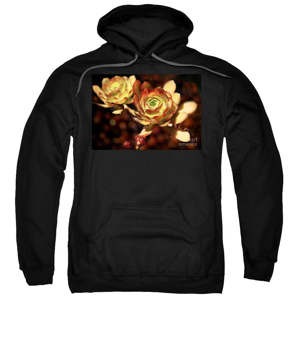 Plants Sweatshirt featuring the photograph Desert Roses by Ellen Cotton