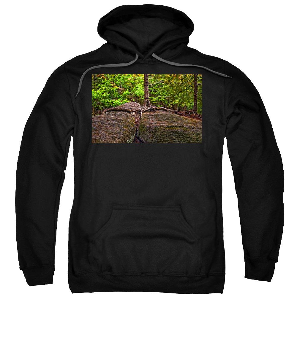 West Virginia Sweatshirt featuring the photograph Determination Painted by Steve Harrington