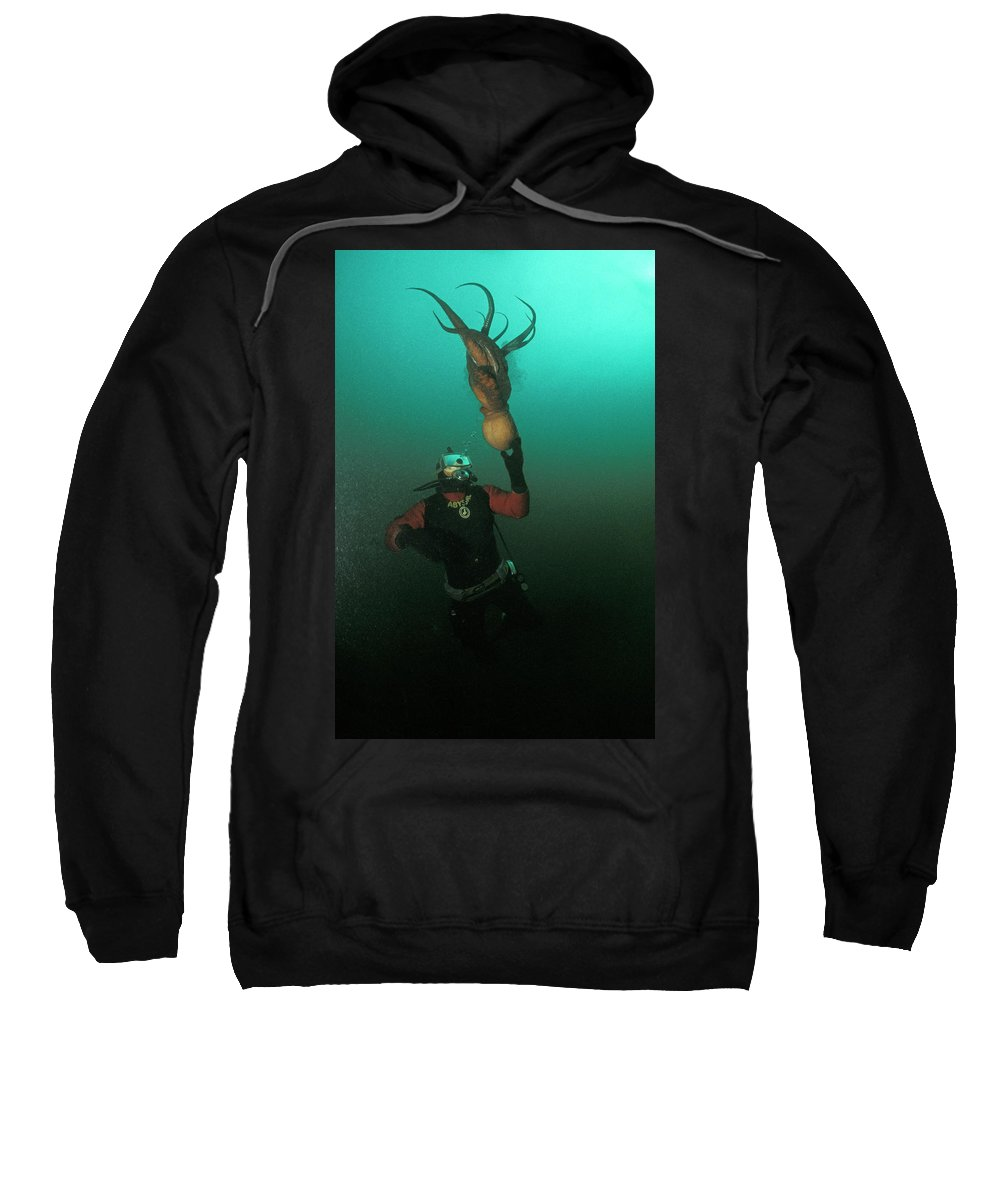 Adventure Sweatshirt featuring the photograph Diver With Giant Octopus Octopus by Jurgen Freund