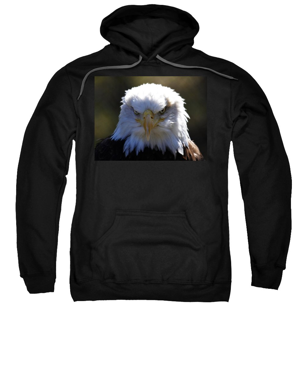 Bald Eagle Sweatshirt featuring the photograph Do You Feel Lucky? by Steve McKinzie