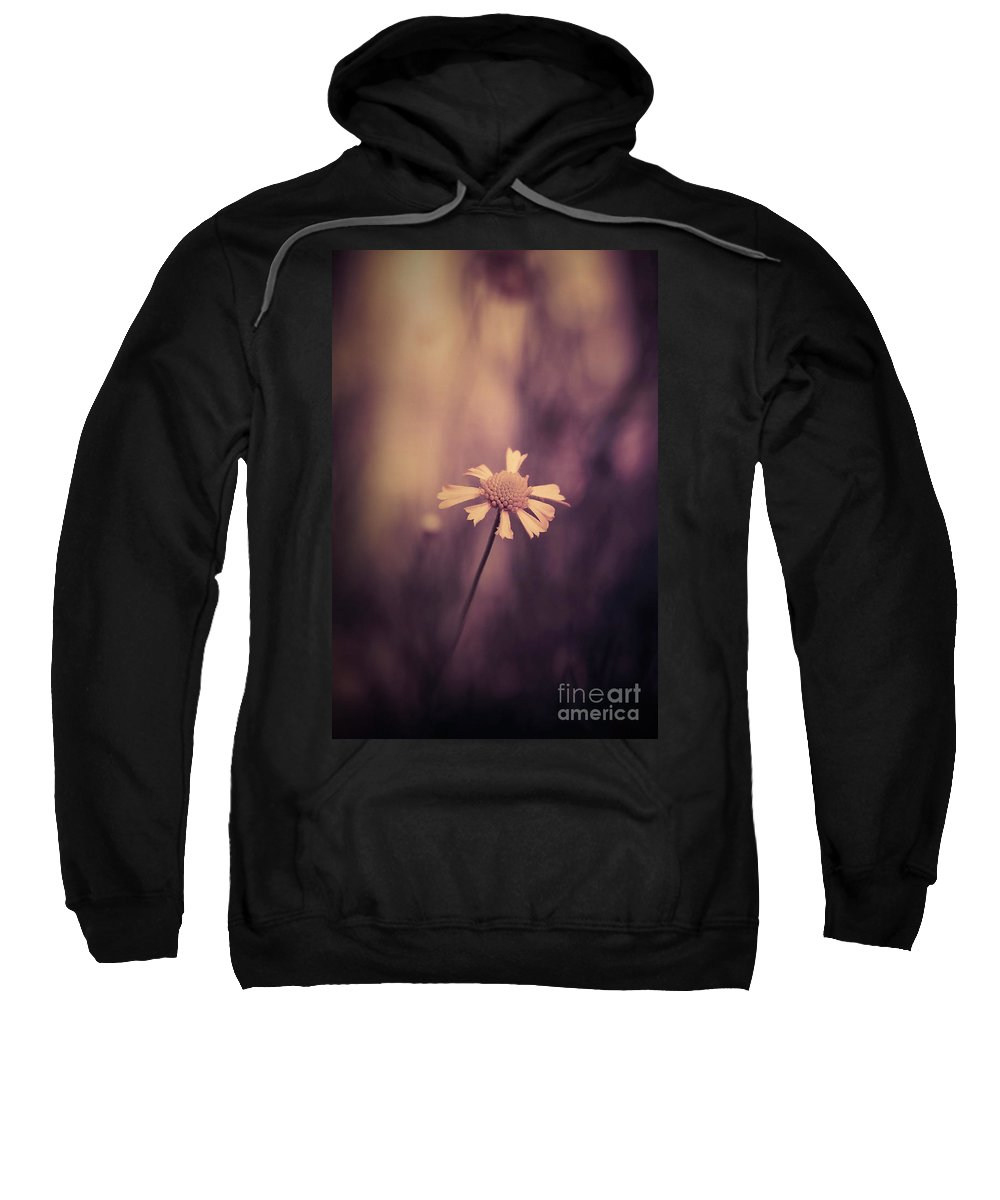 Sweatshirt featuring the photograph Don't Forget Me by Trish Mistric