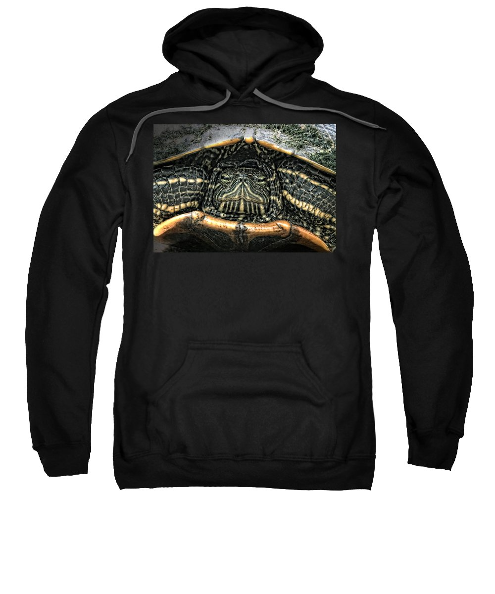 Turtle Sweatshirt featuring the photograph Don't Rock My House - Turtle by Ella Kaye Dickey