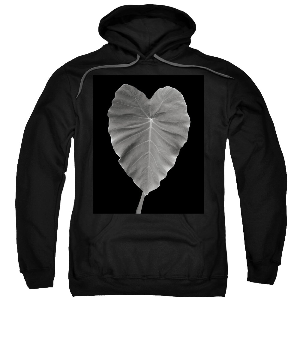 Elephant Sweatshirt featuring the photograph Elephant Ear Study 1 by Marilyn Hunt