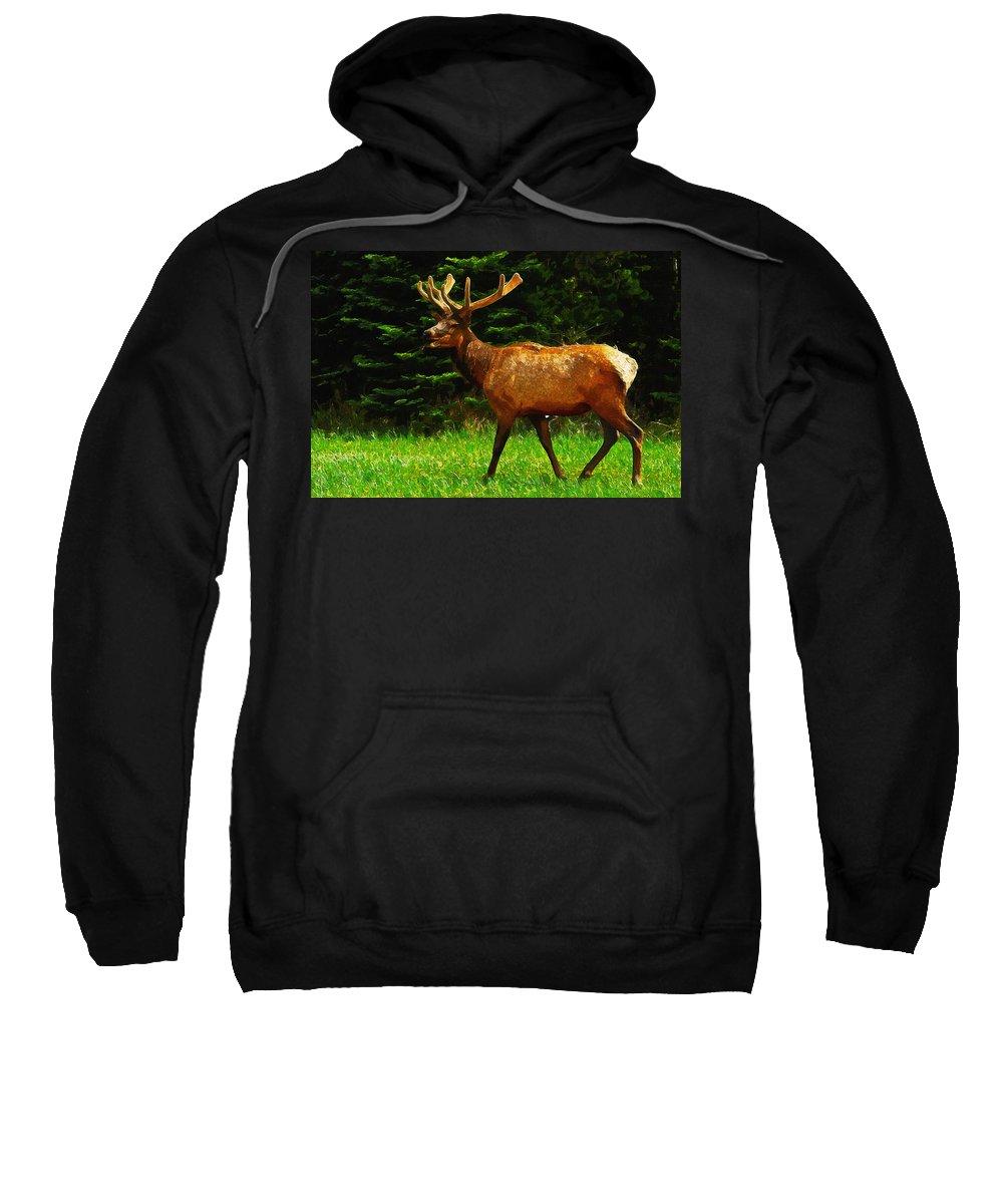 Elk Sweatshirt featuring the painting Elk Portrait by Inspirowl Design