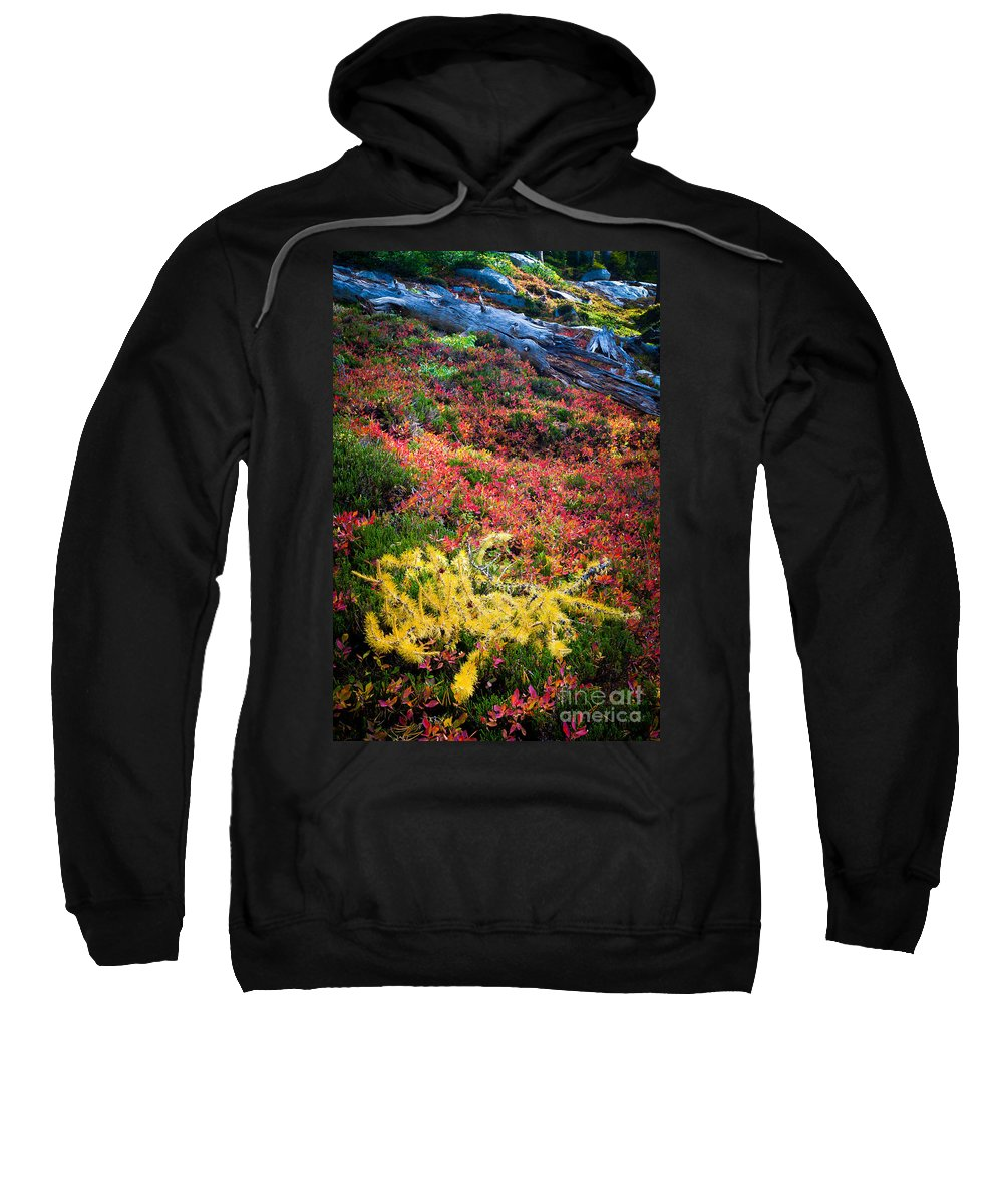 Alpine Lakes Wilderness Sweatshirt featuring the photograph Enchanted Colors by Inge Johnsson
