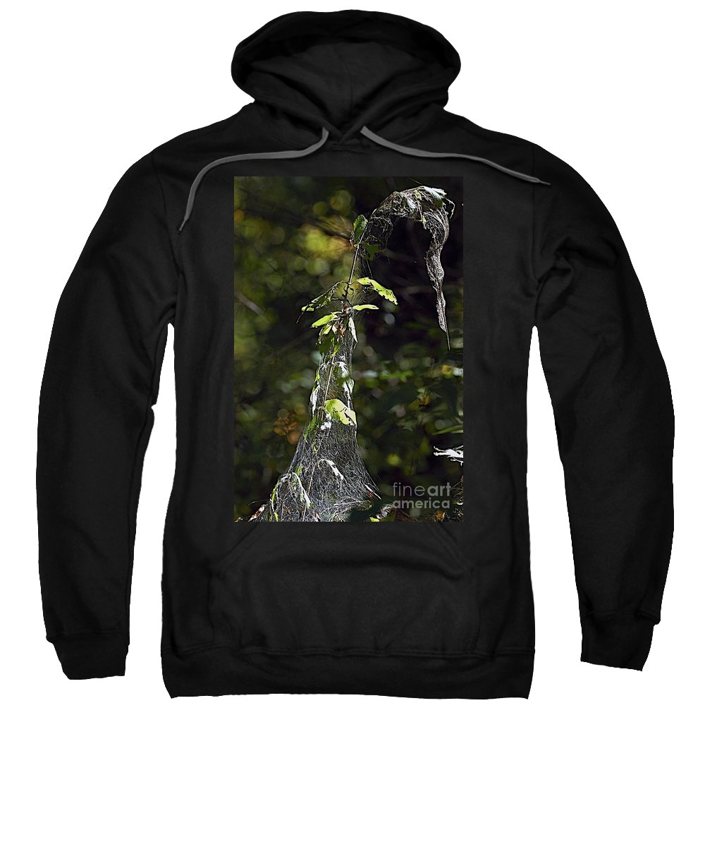 Web Sweatshirt featuring the photograph Entangle by Joseph Yarbrough